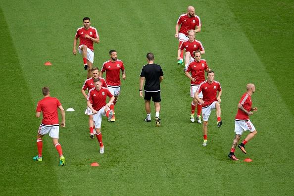 Tran xu Wales vs Bac Ireland anh 5