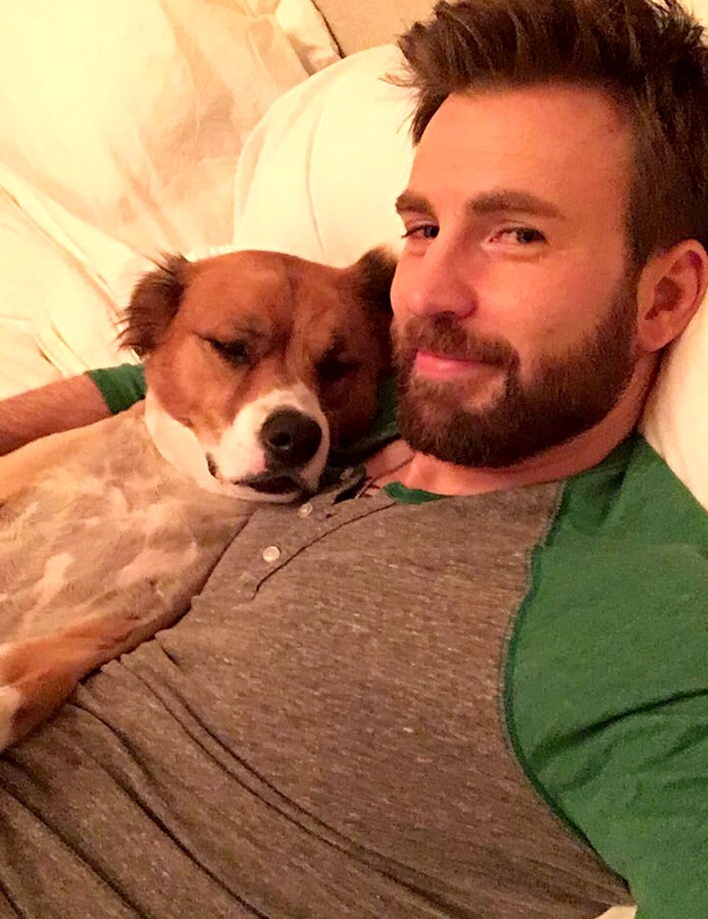 chris evans lo anh anh 1