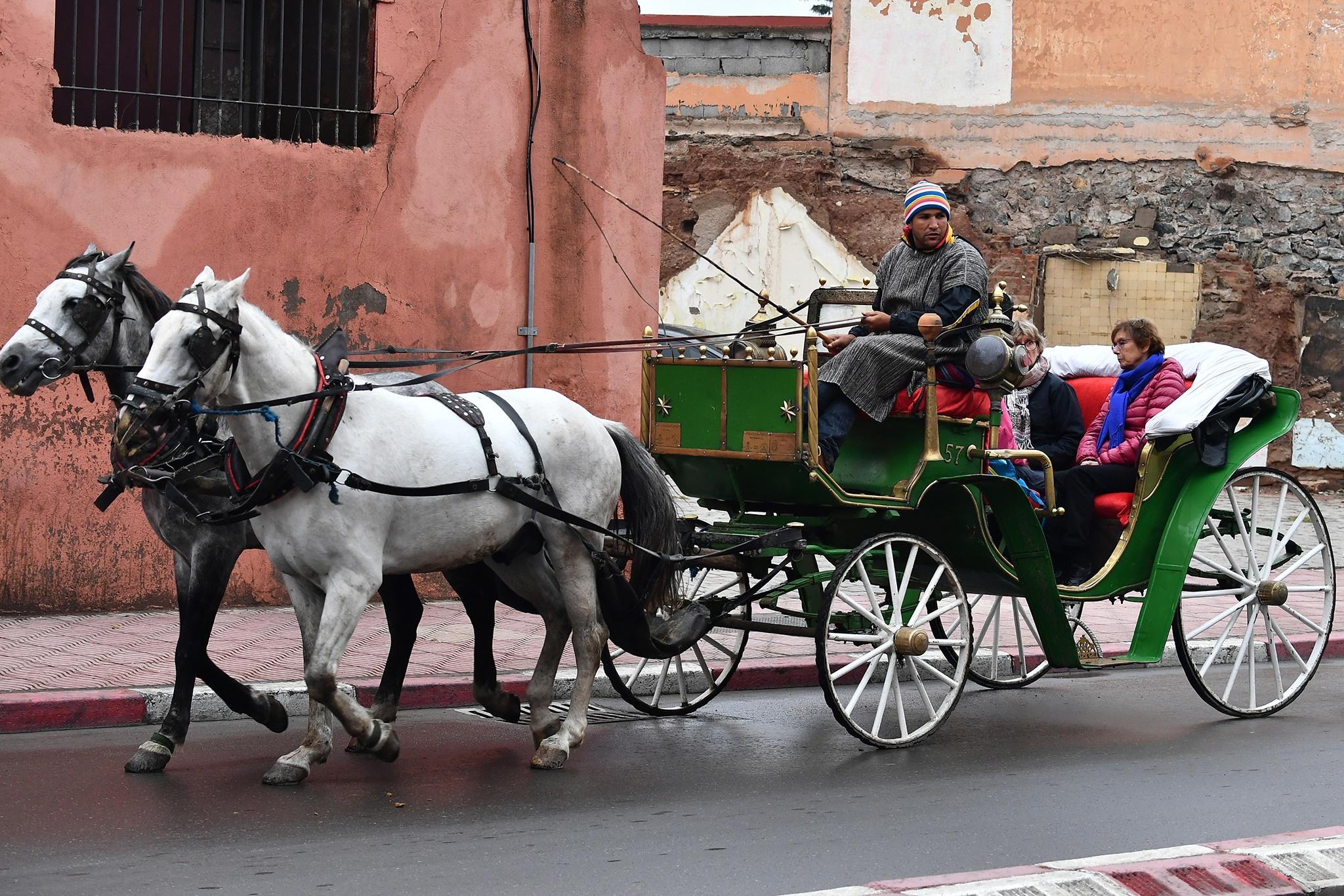 Mua dong o xu so lanh gia Morocco hinh anh 11