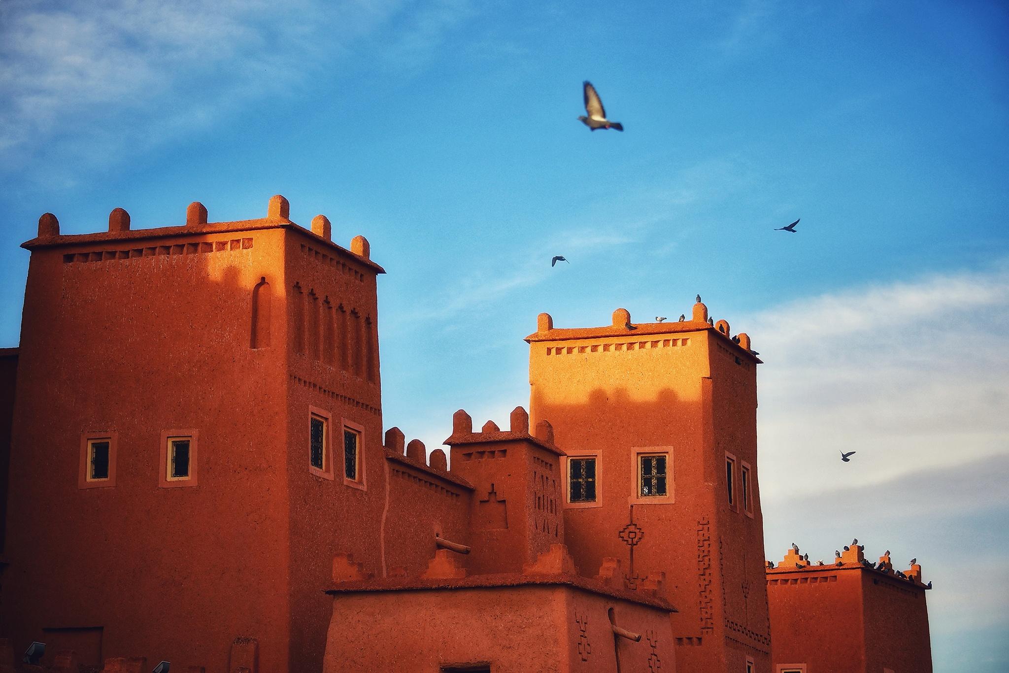 Mua dong o xu so lanh gia Morocco hinh anh 34