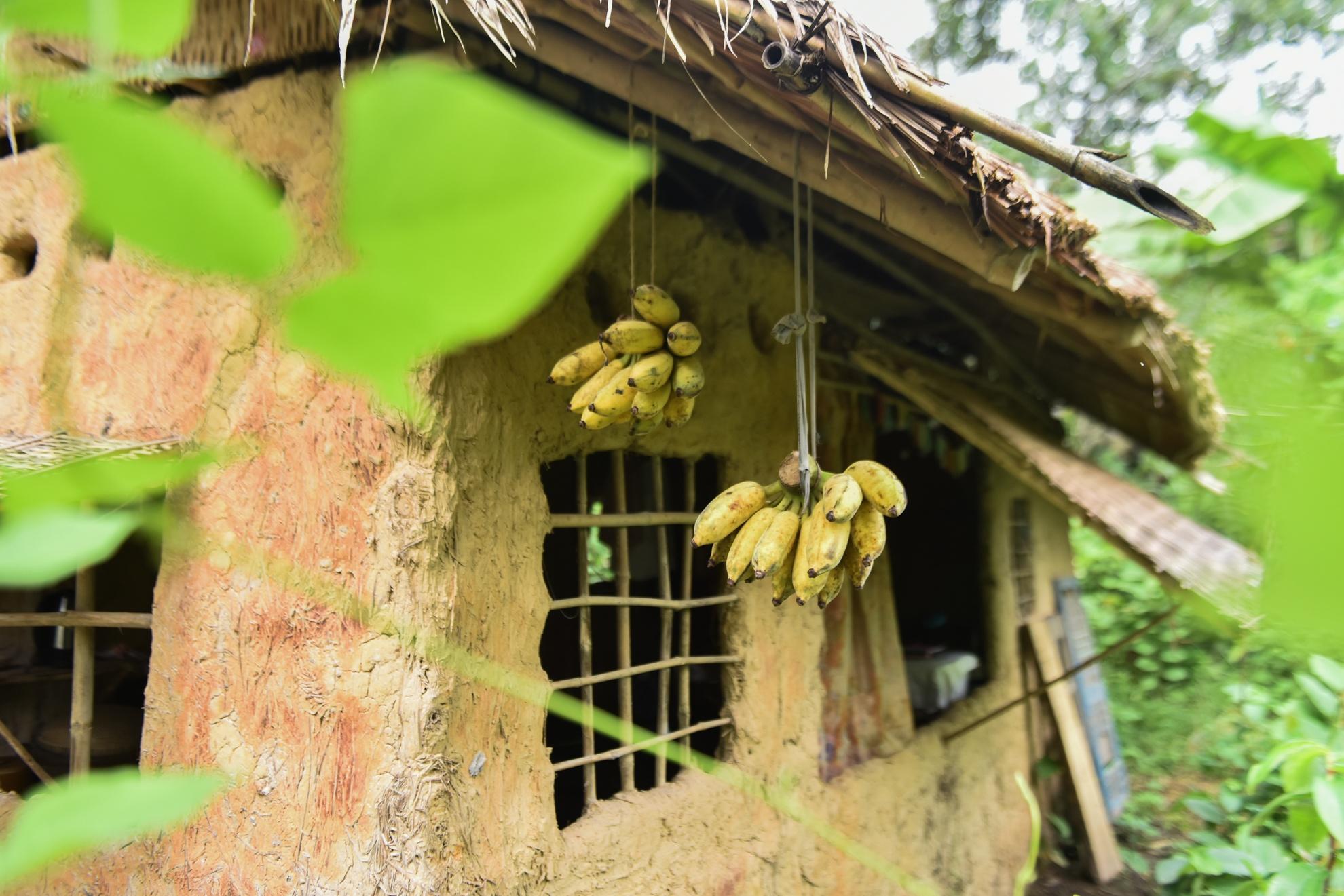 Chang nong dan 'khung' va giac mo ong hut tre hinh anh 9