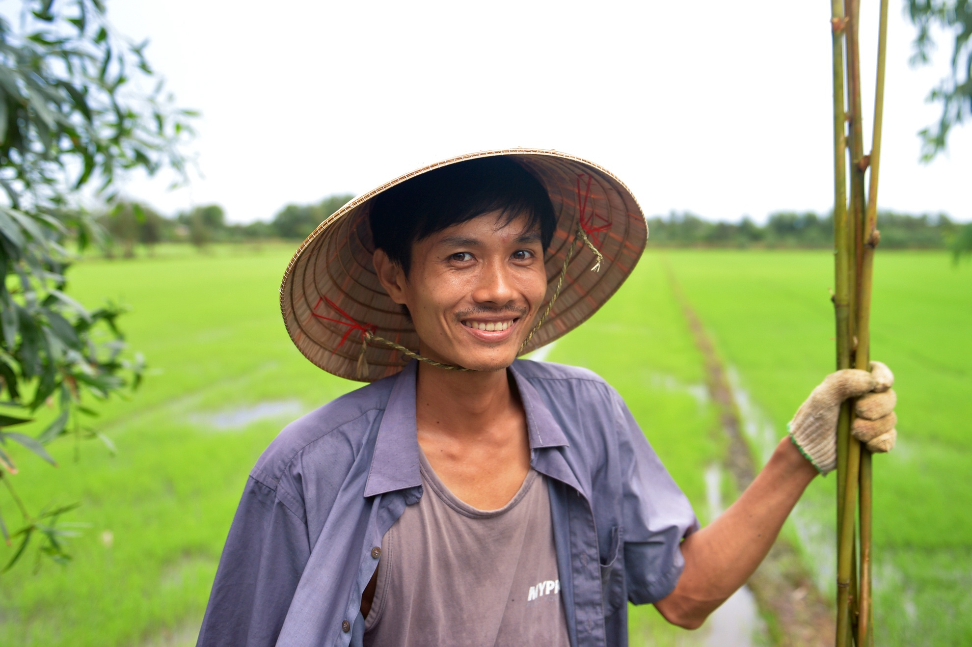 Chang nong dan 'khung' va giac mo ong hut tre hinh anh 2