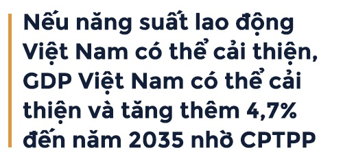 CPTPP va giac mo thinh vuong cua Viet Nam hinh anh 5