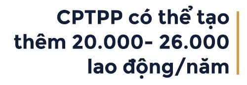 CPTPP va giac mo thinh vuong cua Viet Nam hinh anh 7
