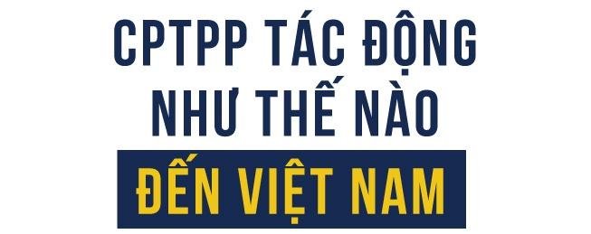 CPTPP va giac mo thinh vuong cua Viet Nam hinh anh 3