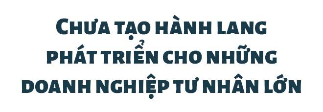 'Nuoc ngoai lam duoc thi doanh nhan Viet cung lam duoc' hinh anh 9