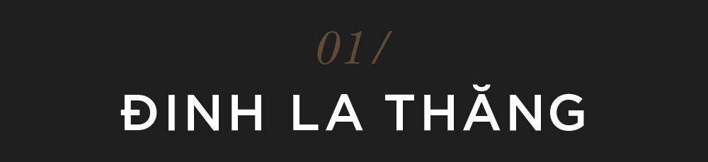 2018 - nam cua dai an, 'cui lua' hinh anh 3