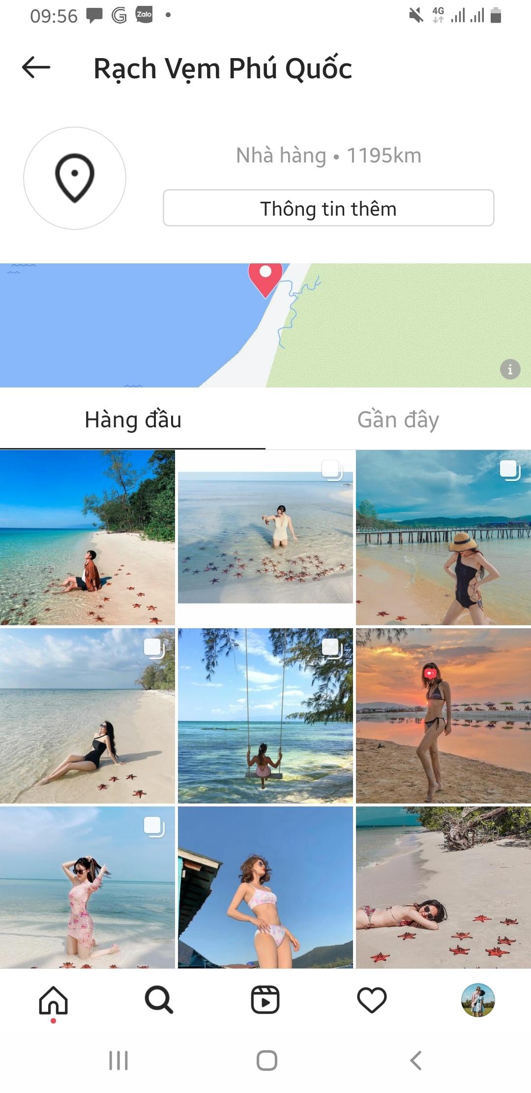 sao bien phu quoc anh 2  - sao - Cảnh sao biển chết khô ở Phú Quốc