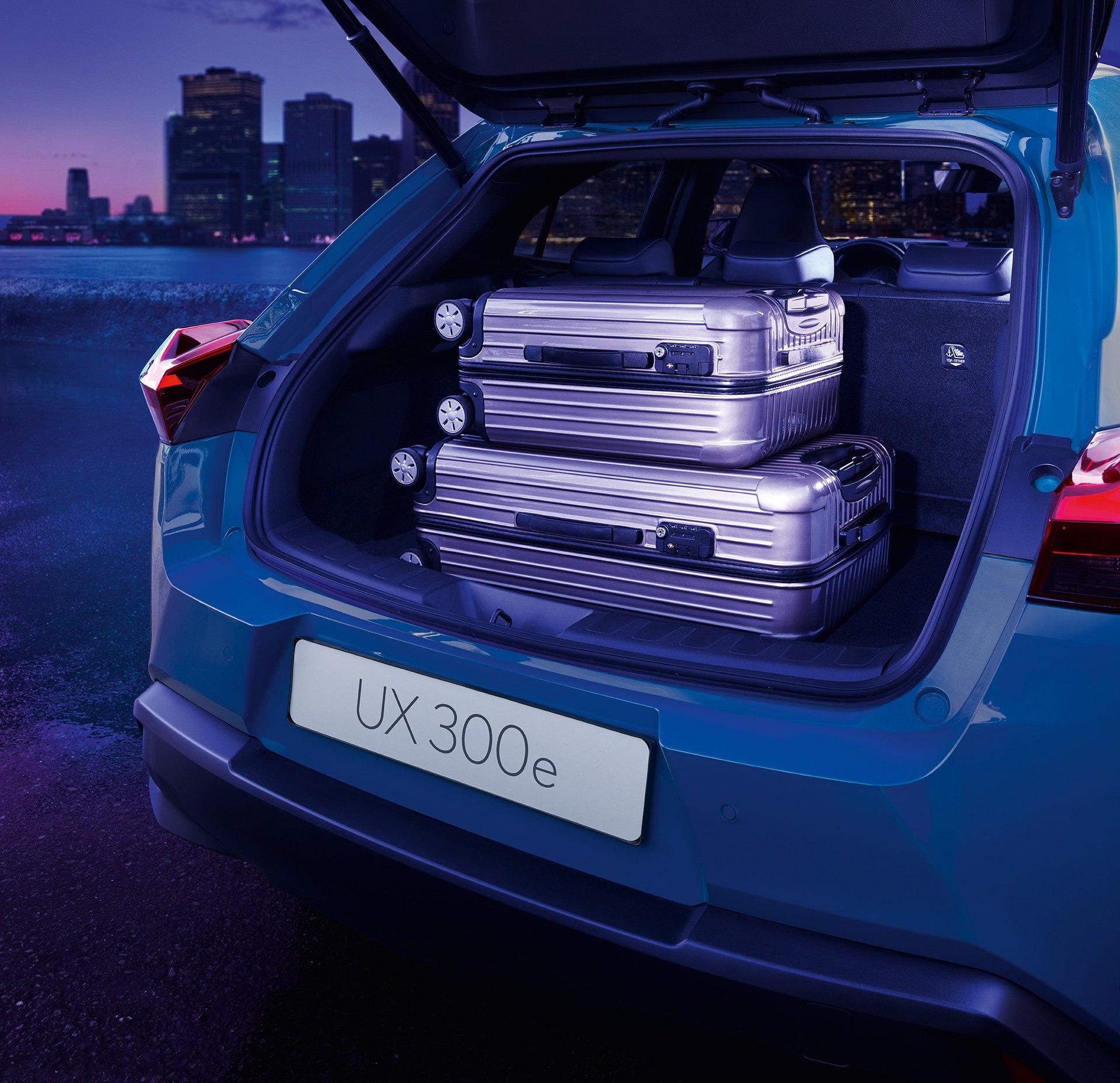 UX 300e - xe dien dau tien cua Lexus ra mat the gioi hinh anh 19