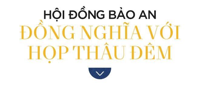 'Vao Hoi dong Bao an la co xat voi loi ich cua cac nuoc lon' hinh anh 3