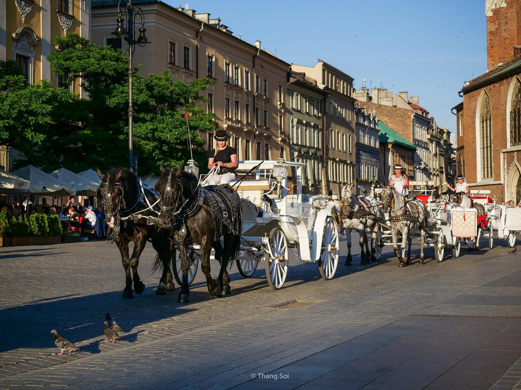Krakow, kinh do co phai ghe tham khi den Ba Lan hinh anh 37