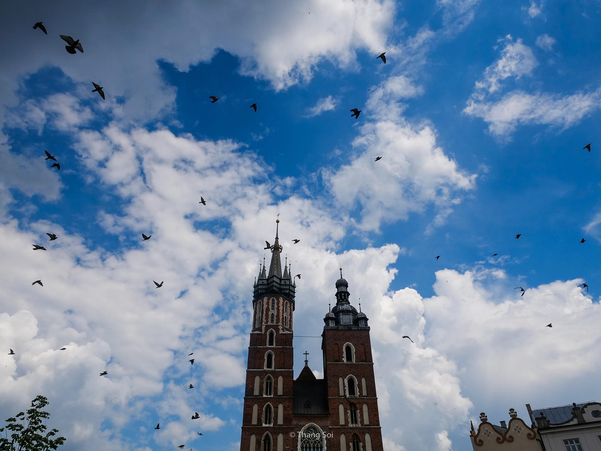 Krakow, kinh do co phai ghe tham khi den Ba Lan hinh anh 47