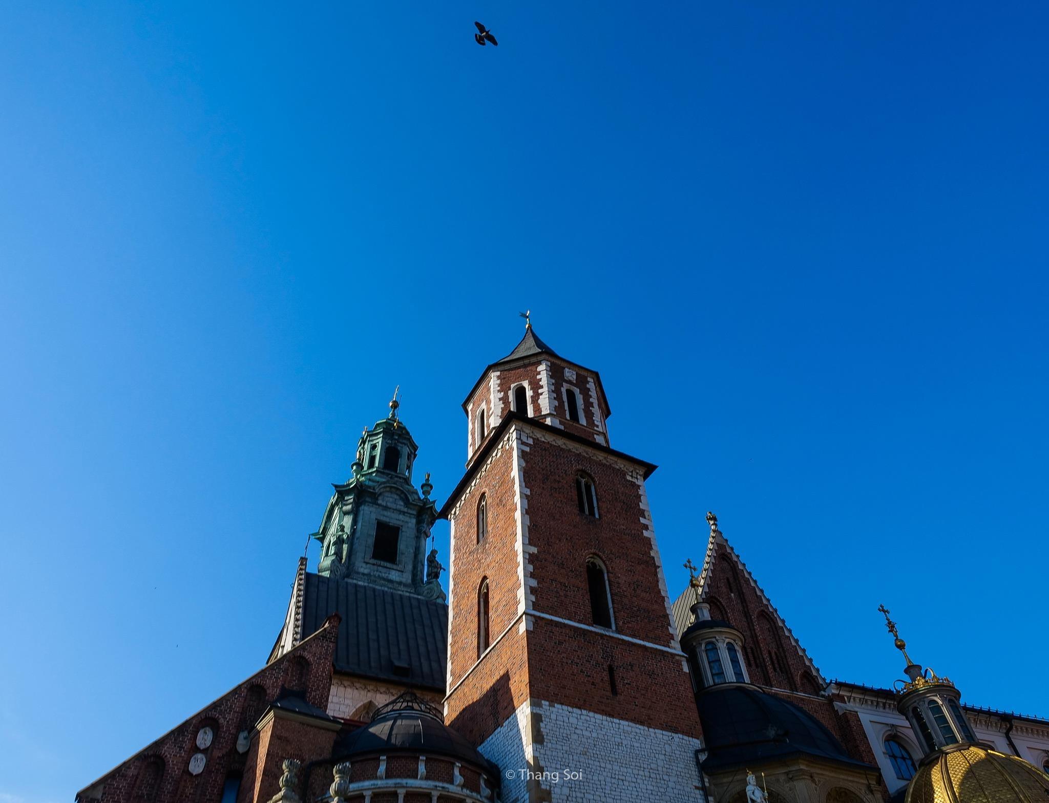 Krakow, kinh do co phai ghe tham khi den Ba Lan hinh anh 52