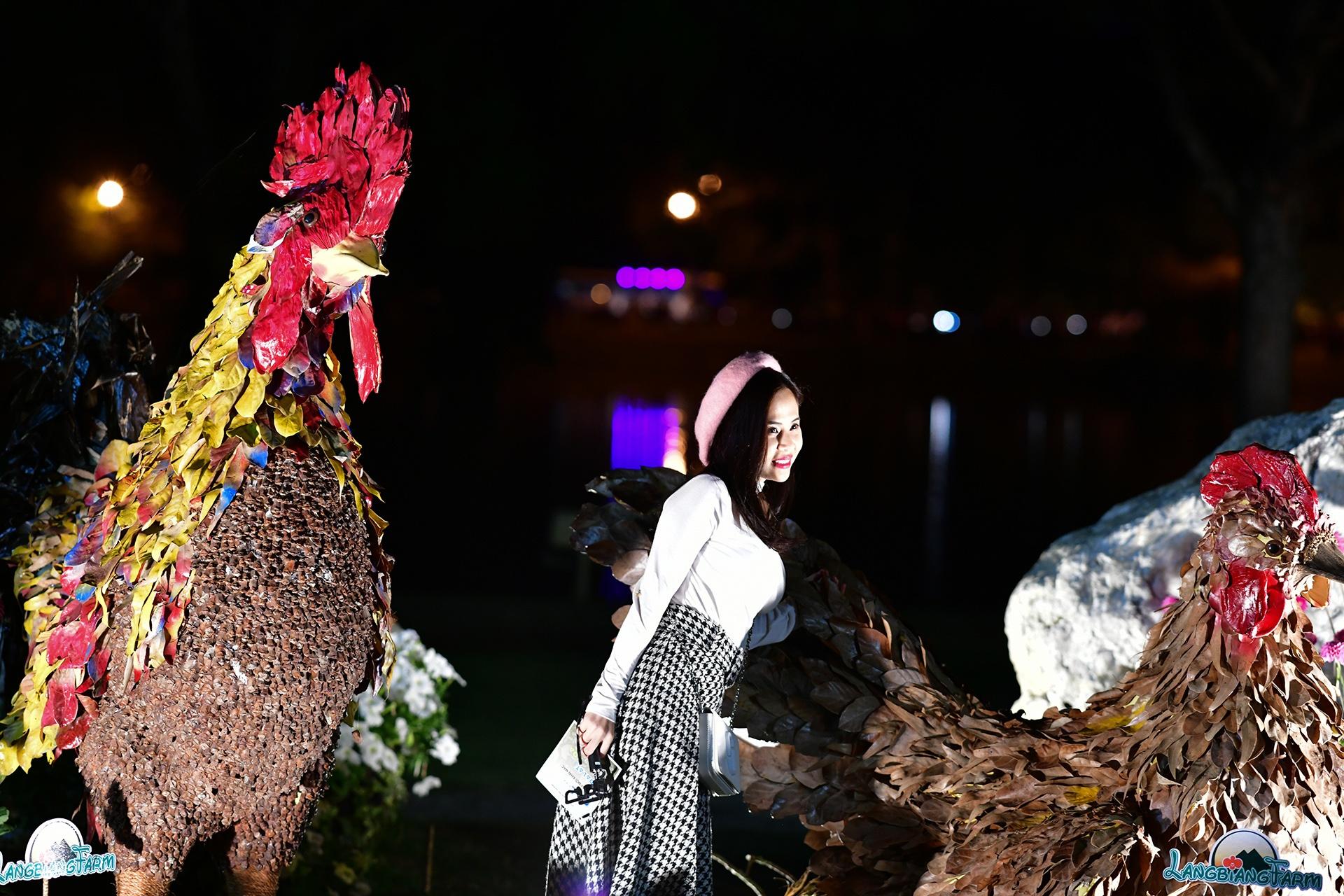 Da Lat ruc ro trong dem khai mac Festival hoa hinh anh 50 hoa_da_lat_zing26.JPG