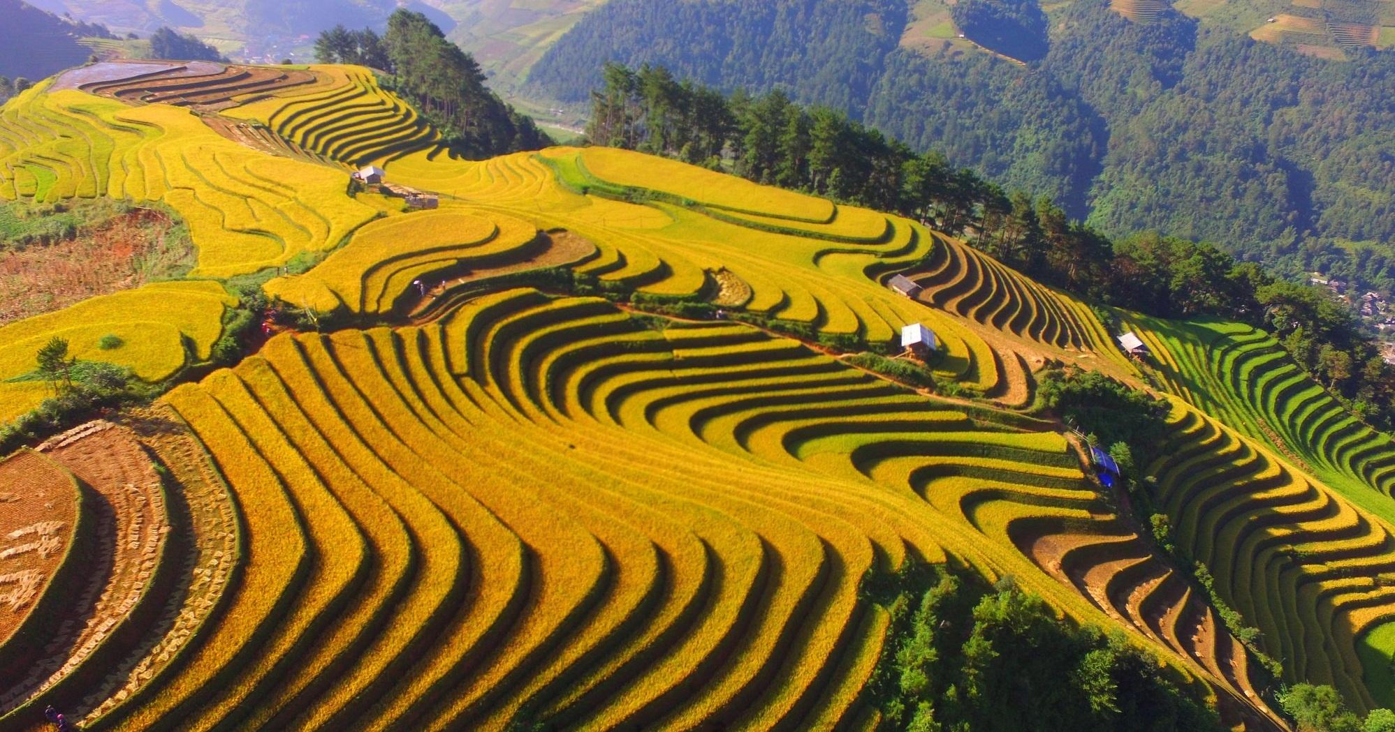 Vietnam days trip