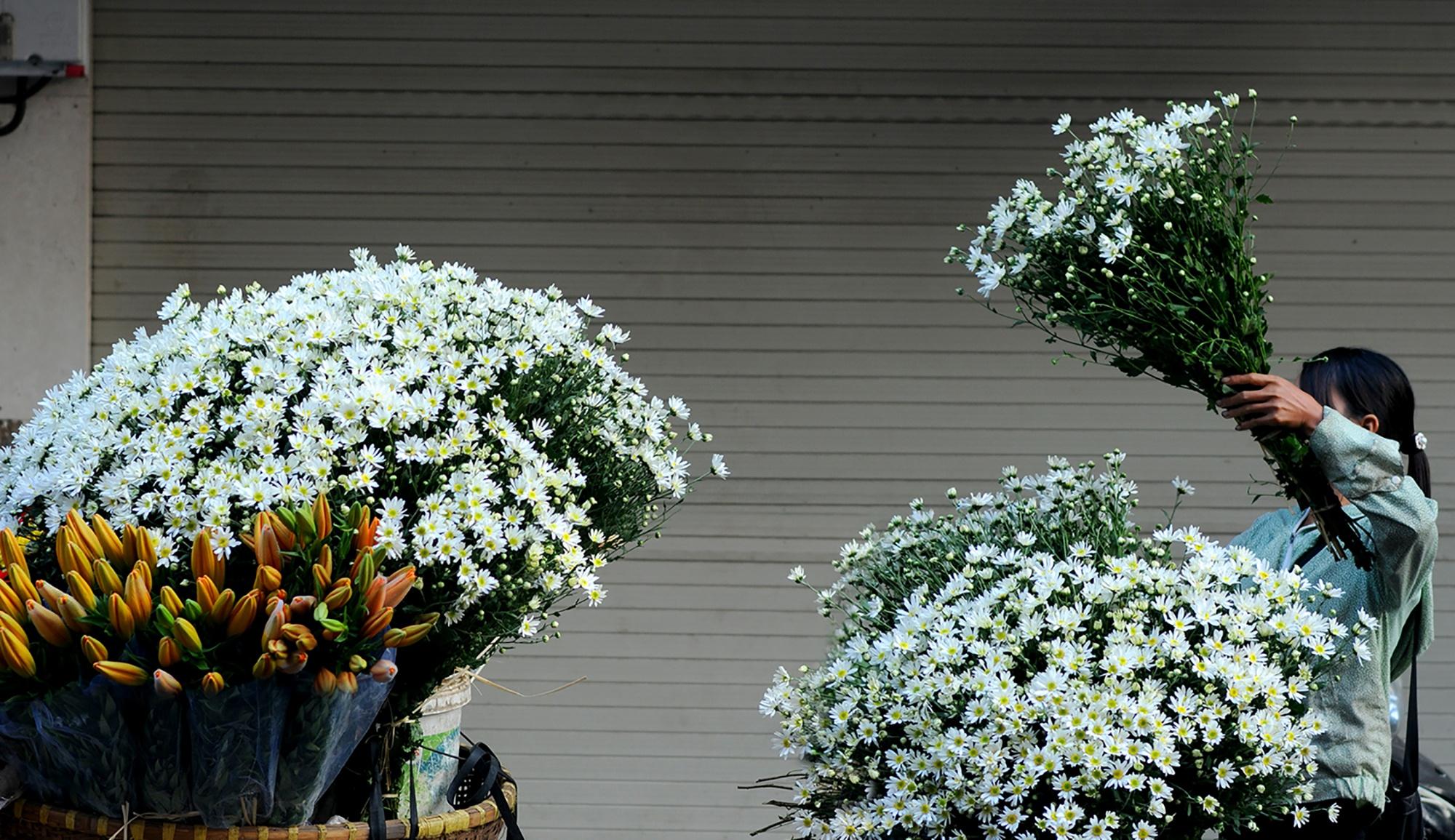 Xuyen xao mua cuc hoa mi don dong ve giua long Ha Noi hinh anh 33