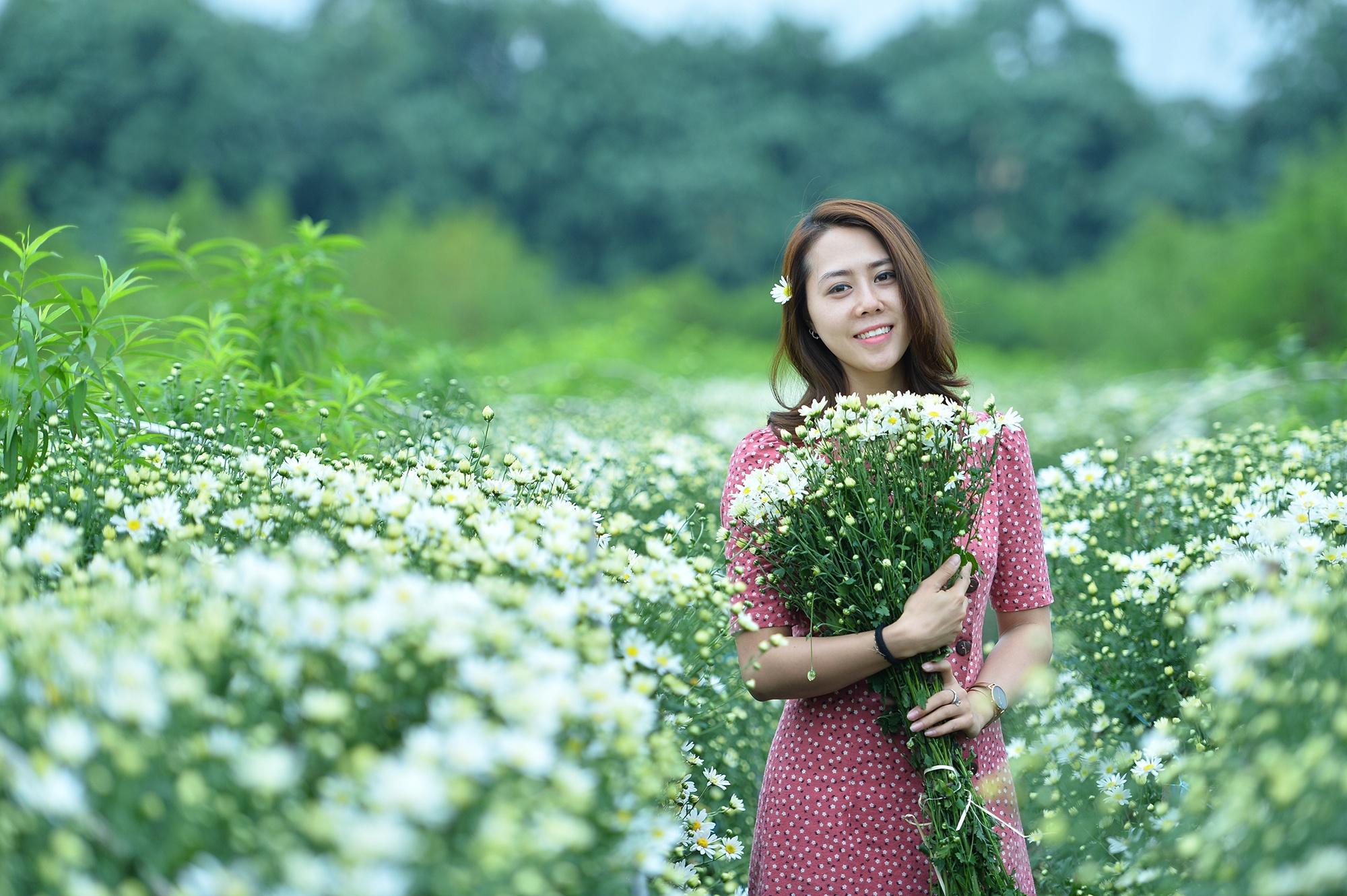Xuyen xao mua cuc hoa mi don dong ve giua long Ha Noi hinh anh 20