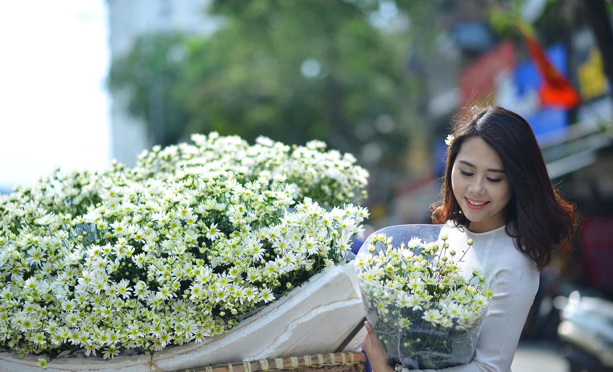 Xuyen xao mua cuc hoa mi don dong ve giua long Ha Noi hinh anh 21