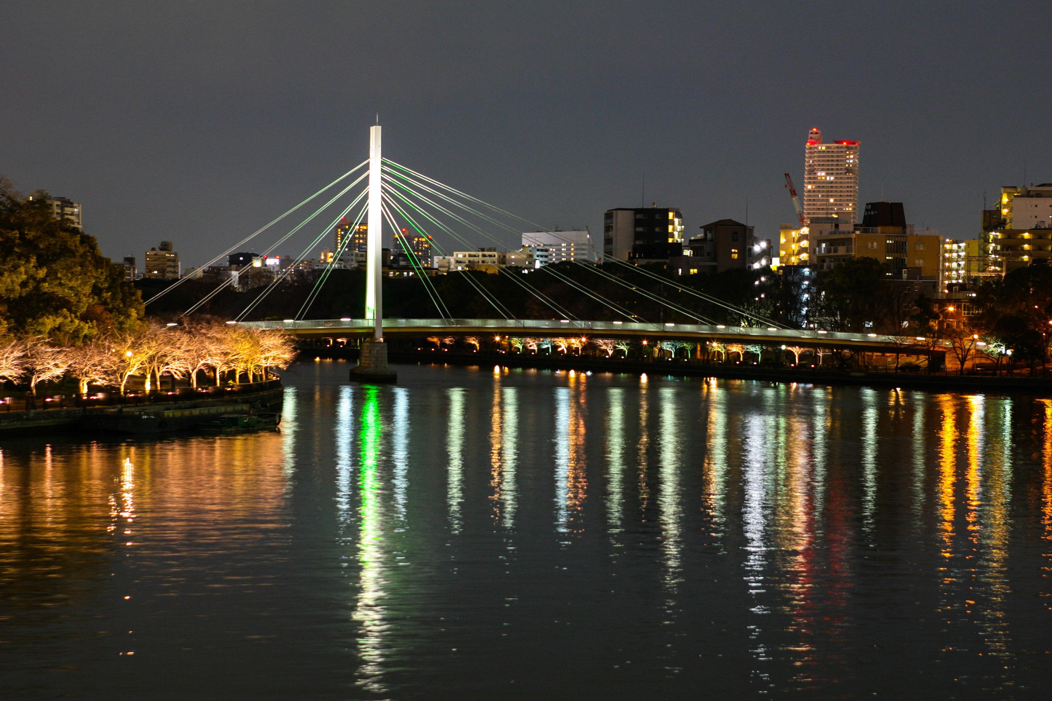 Tokyo va hanh trinh kham pha nhip song thuong ngay o Nhat Ban hinh anh 60