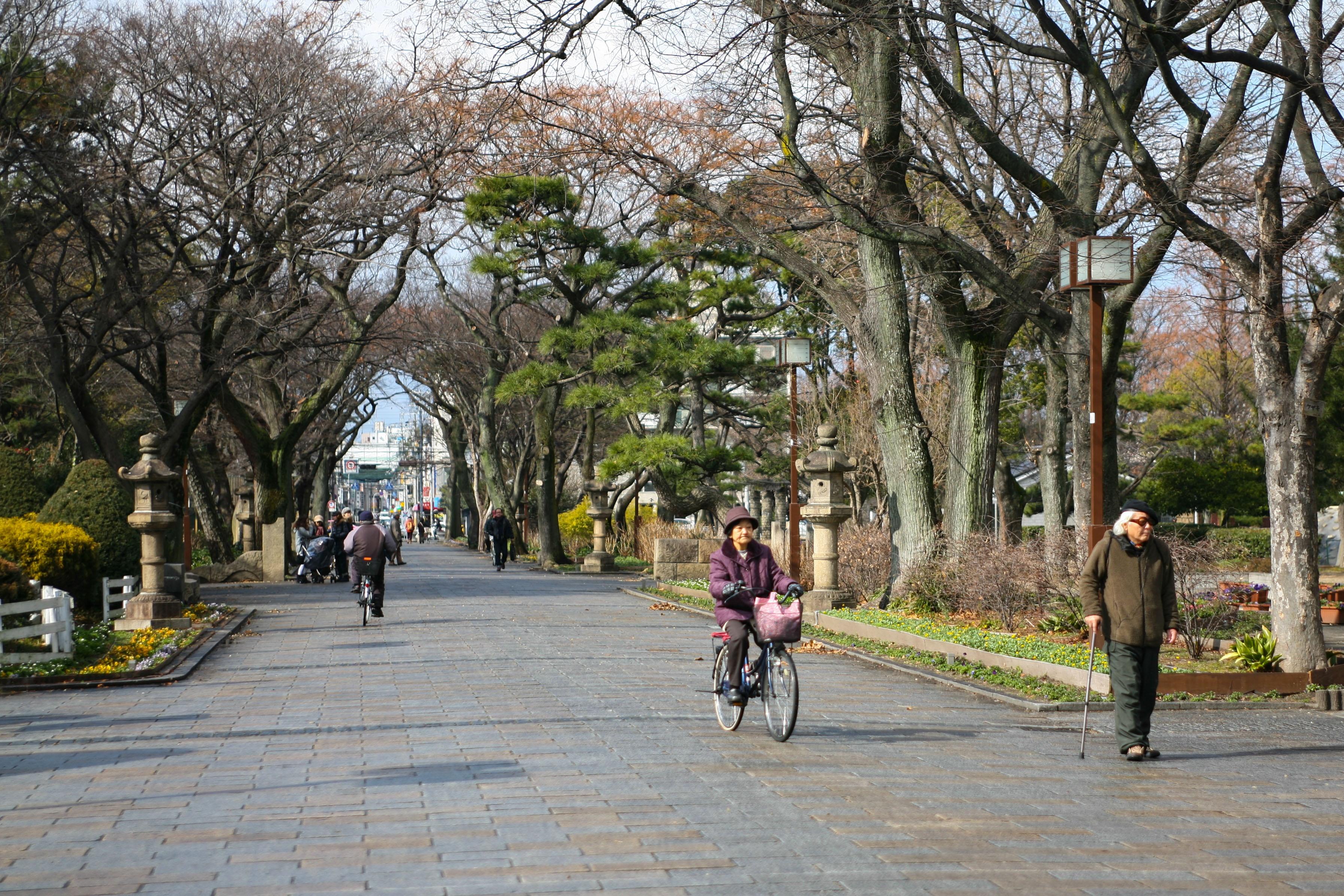 Tokyo va hanh trinh kham pha nhip song thuong ngay o Nhat Ban hinh anh 56