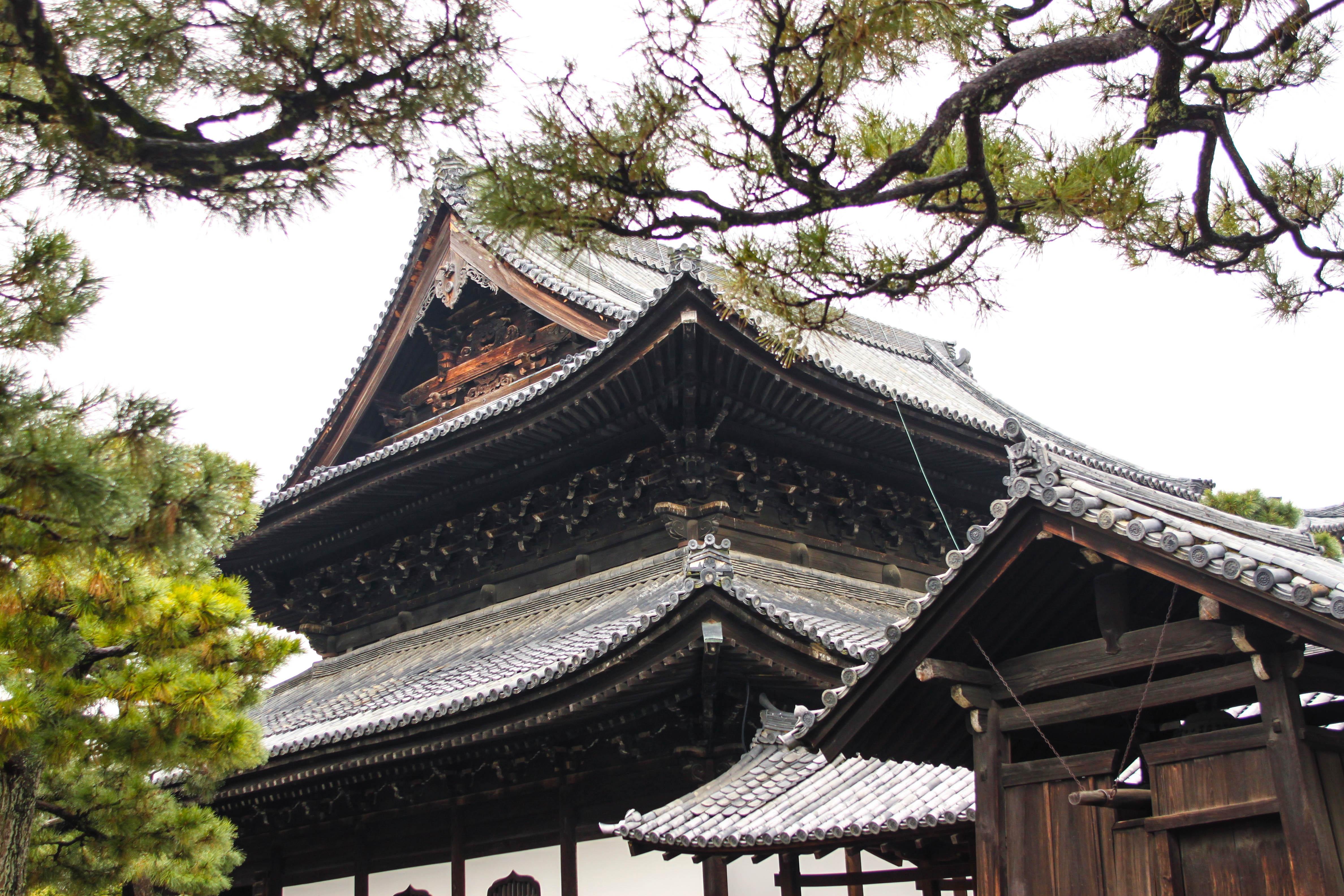 Tokyo va hanh trinh kham pha nhip song thuong ngay o Nhat Ban hinh anh 88