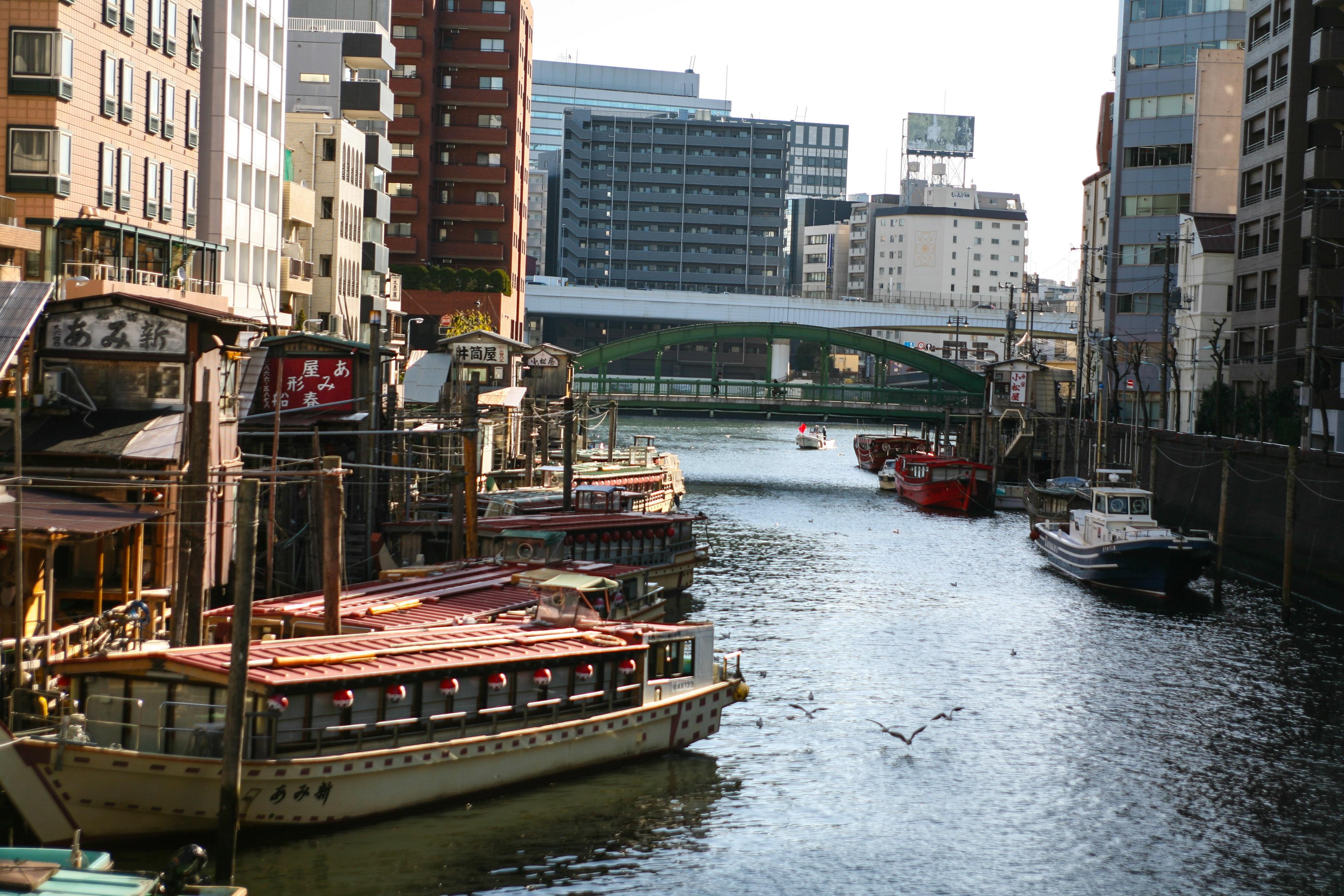 Tokyo va hanh trinh kham pha nhip song thuong ngay o Nhat Ban hinh anh 16