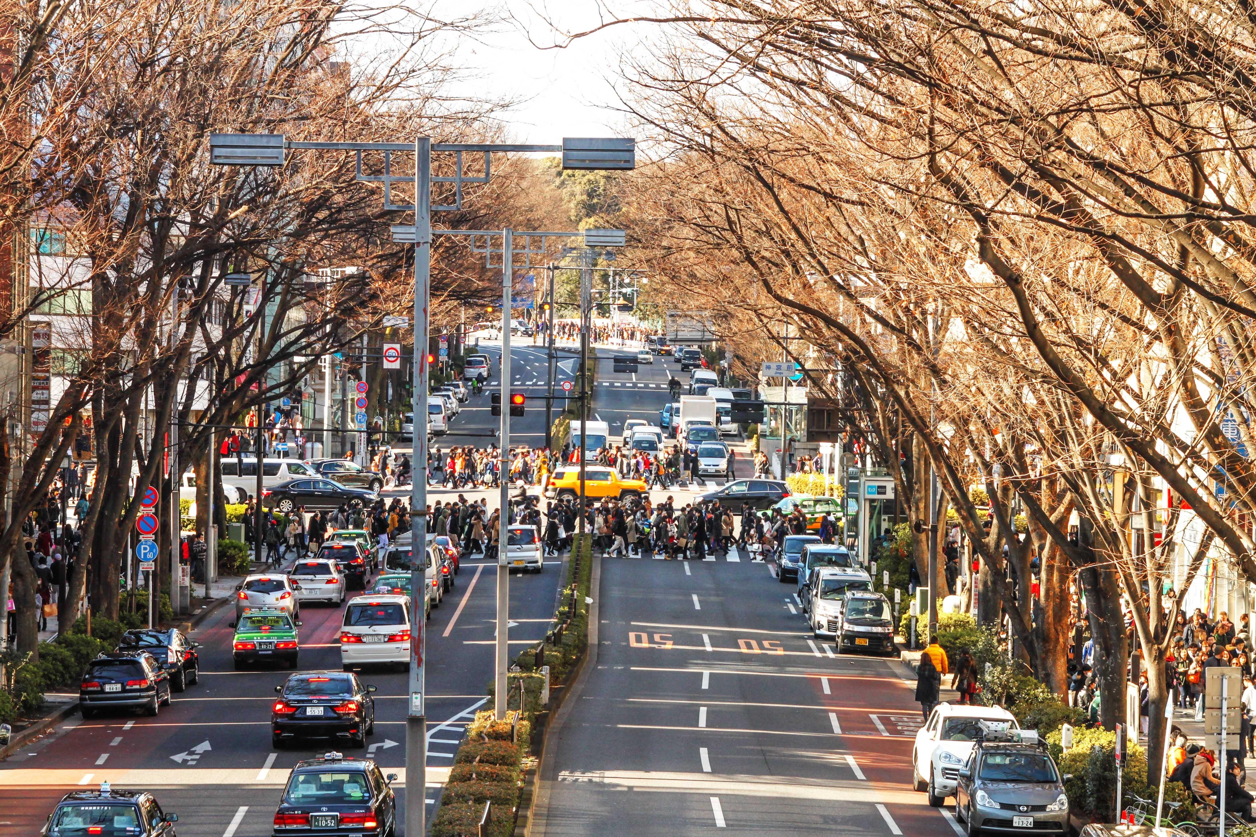 Tokyo va hanh trinh kham pha nhip song thuong ngay o Nhat Ban hinh anh 21