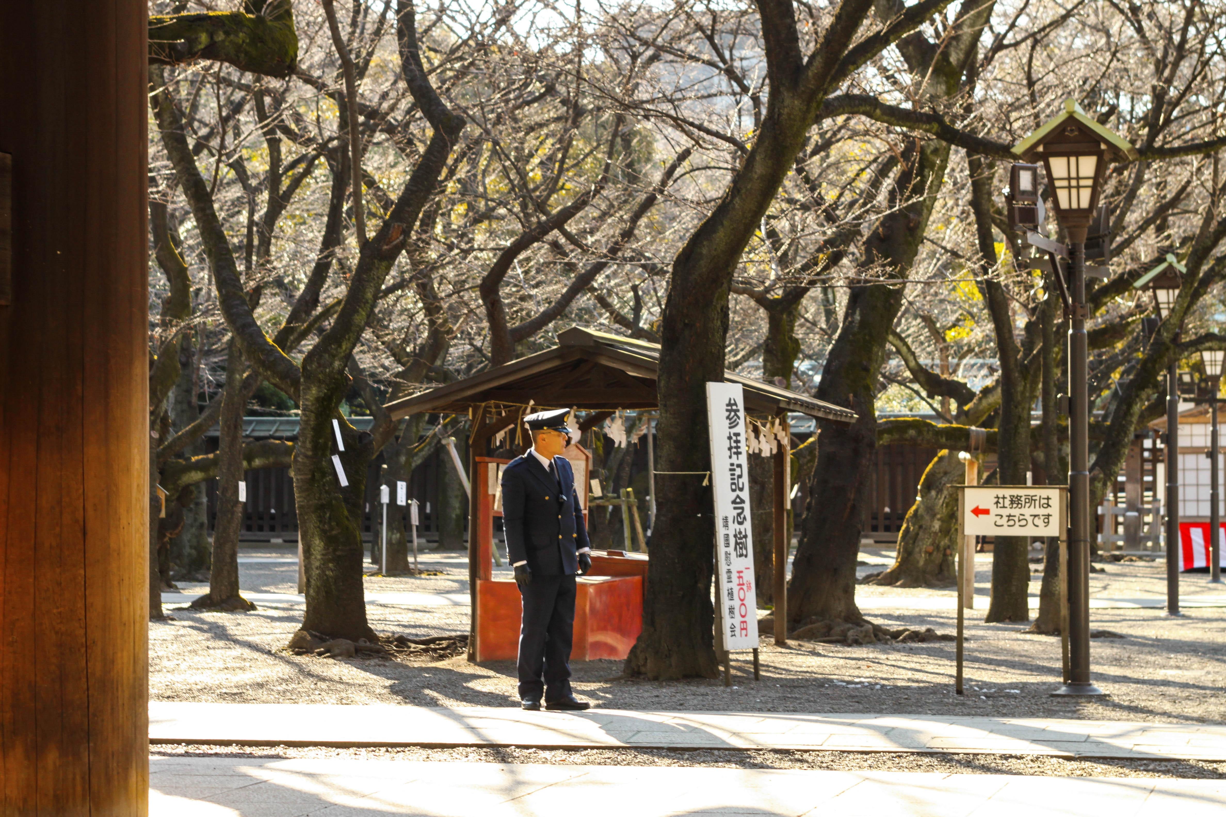 Tokyo va hanh trinh kham pha nhip song thuong ngay o Nhat Ban hinh anh 23