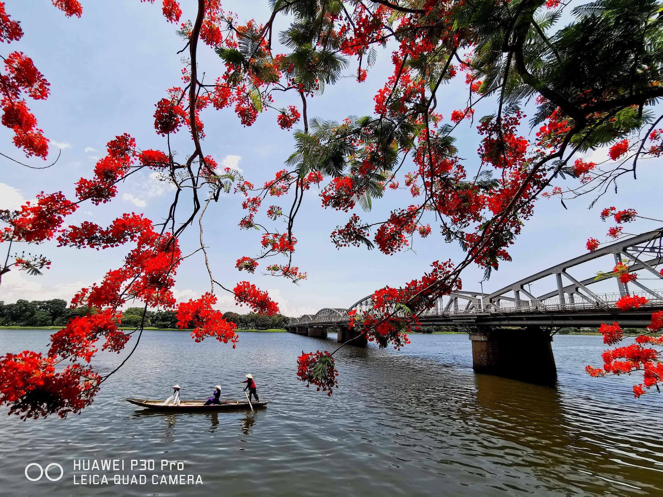 Ninh Binh, Hue sinh dong qua nhung buc hinh biet noi hinh anh 14