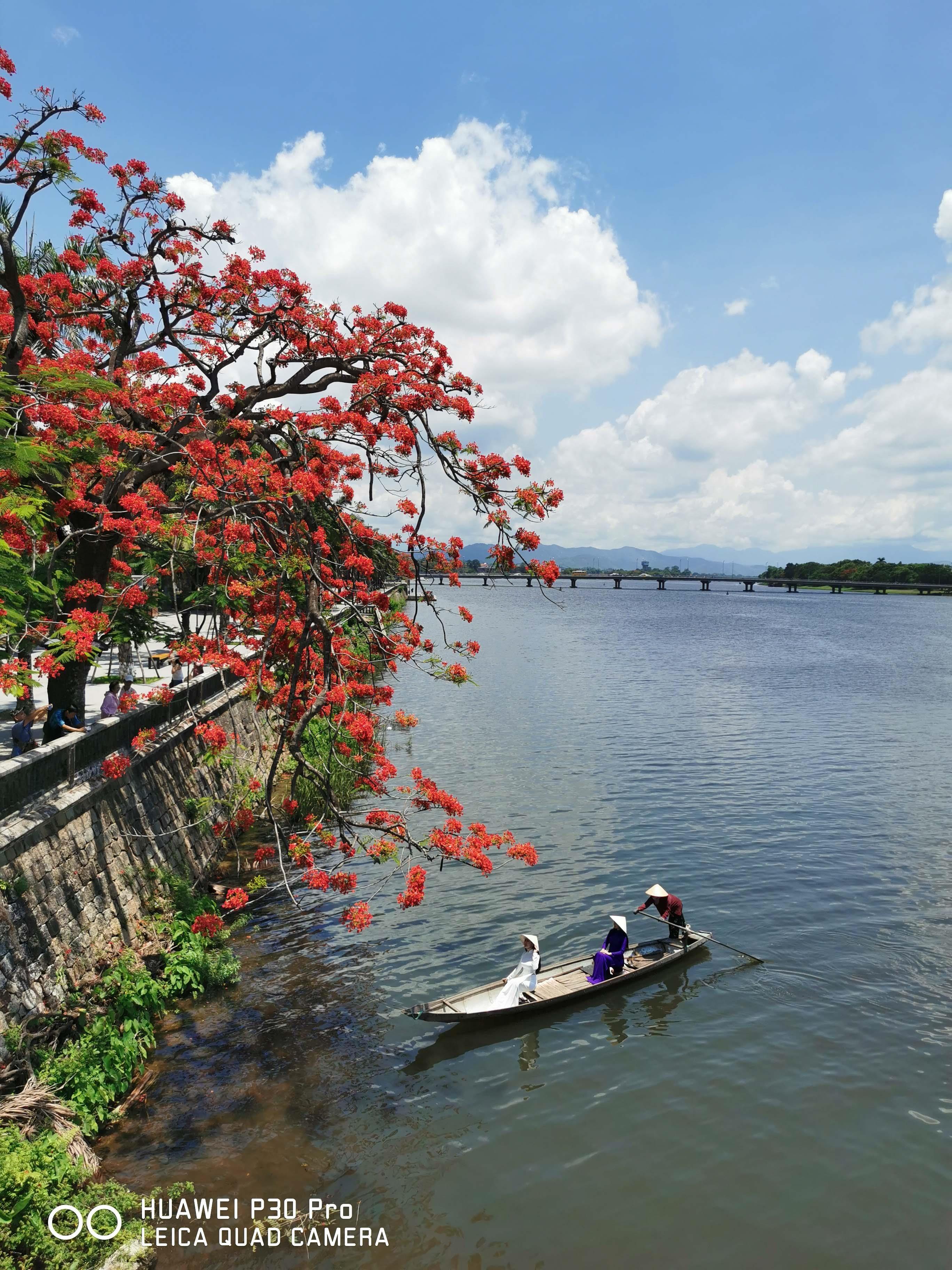 Ninh Binh, Hue sinh dong qua nhung buc hinh biet noi hinh anh 16