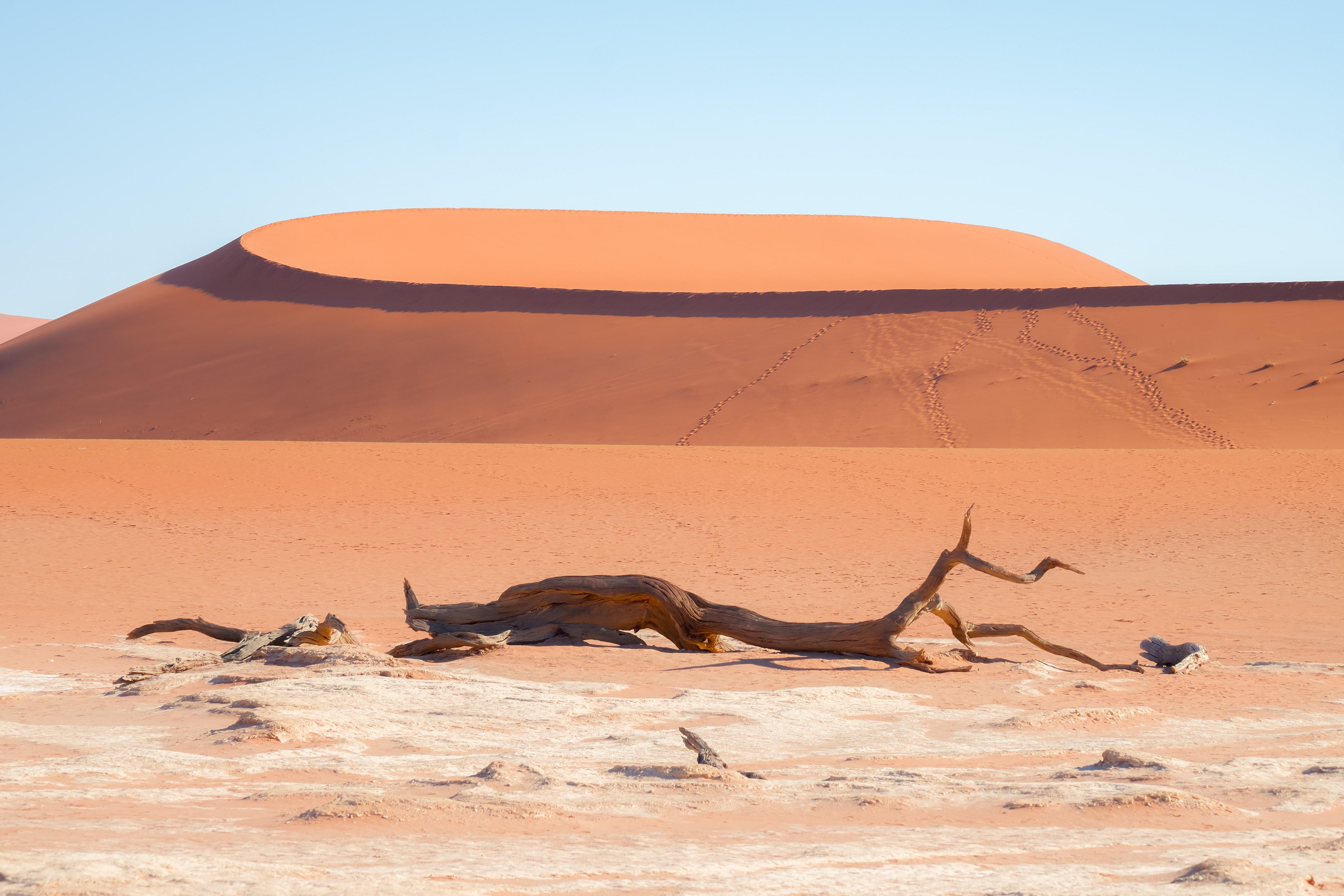 Namibia - den tham thung lung chet, thanh pho ma va dieu khong tuong hinh anh 8