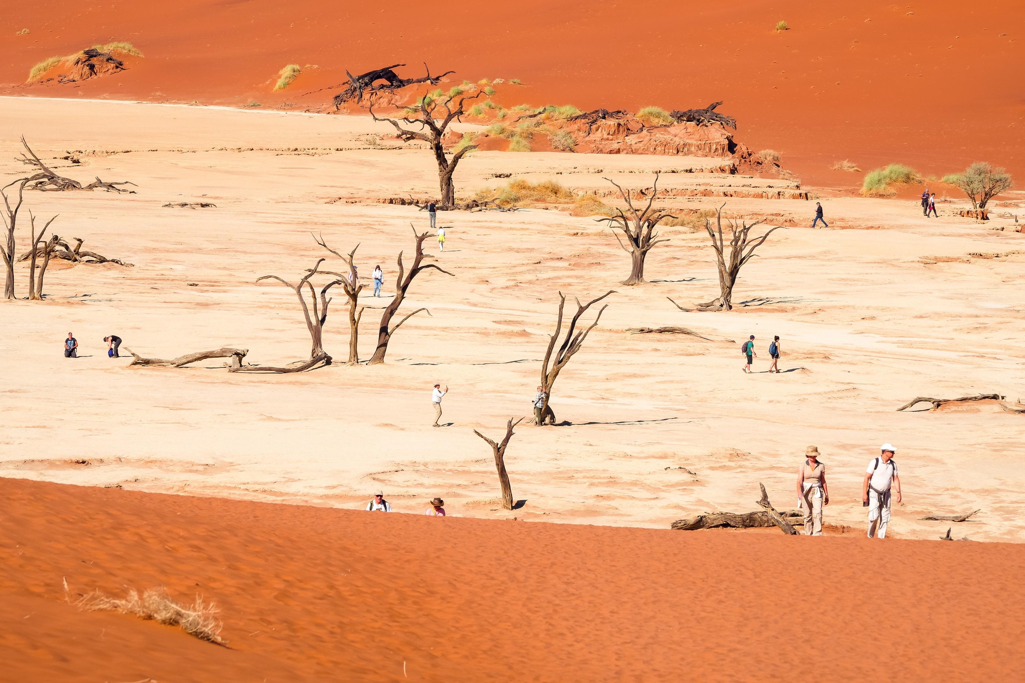 Namibia - den tham thung lung chet, thanh pho ma va dieu khong tuong hinh anh 6
