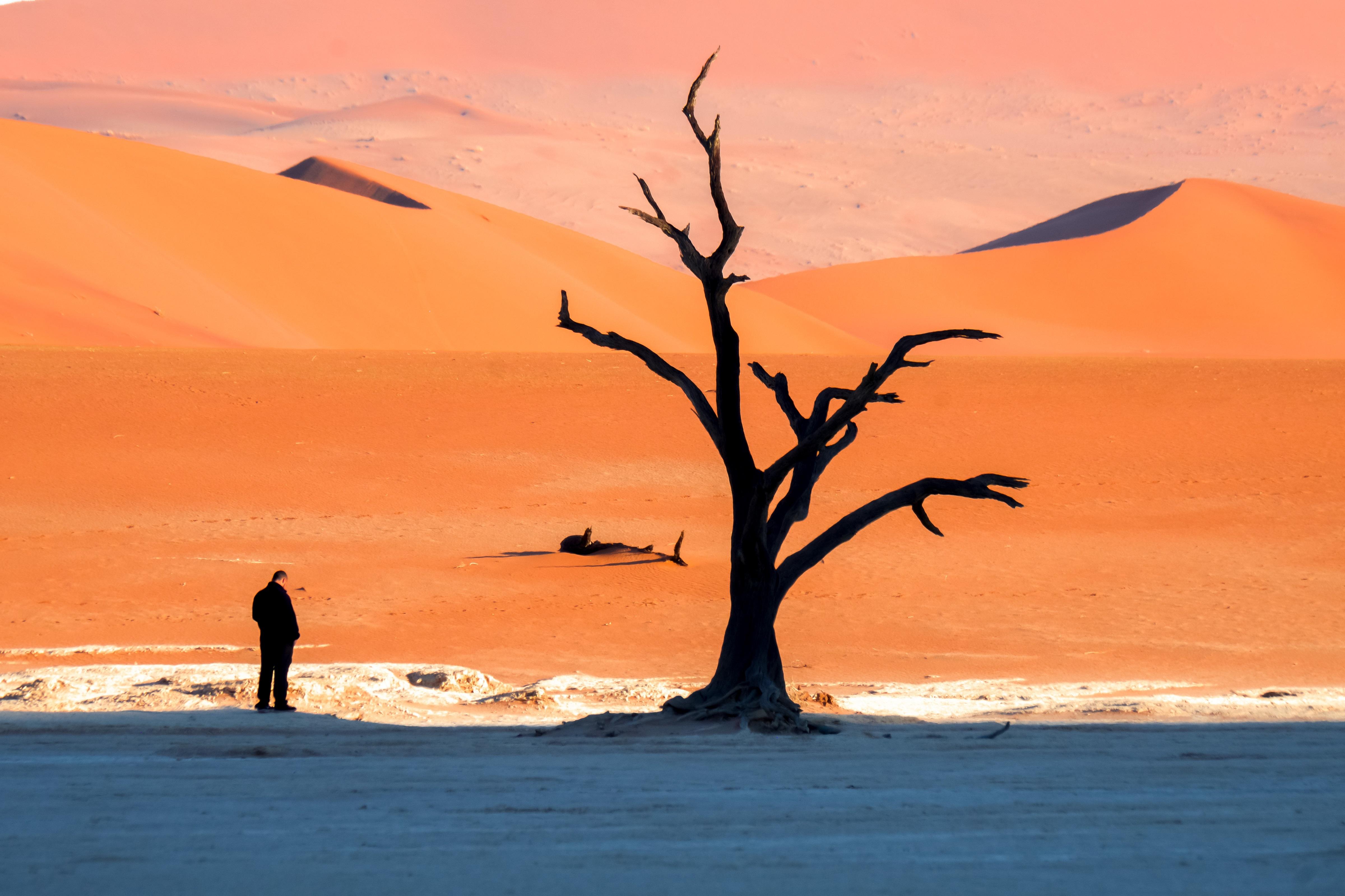 Namibia - den tham thung lung chet, thanh pho ma va dieu khong tuong hinh anh 3