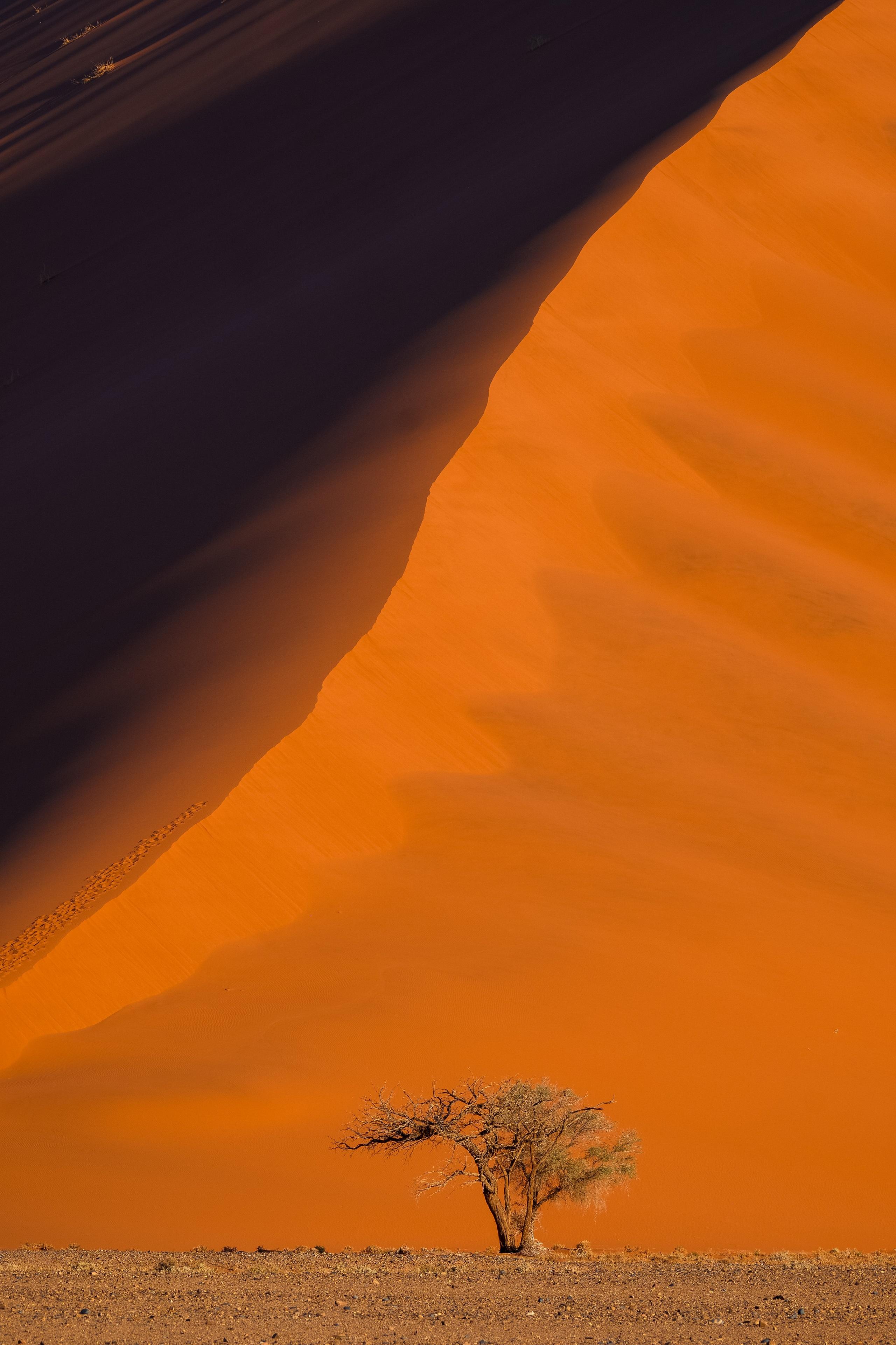 Namibia - den tham thung lung chet, thanh pho ma va dieu khong tuong hinh anh 38
