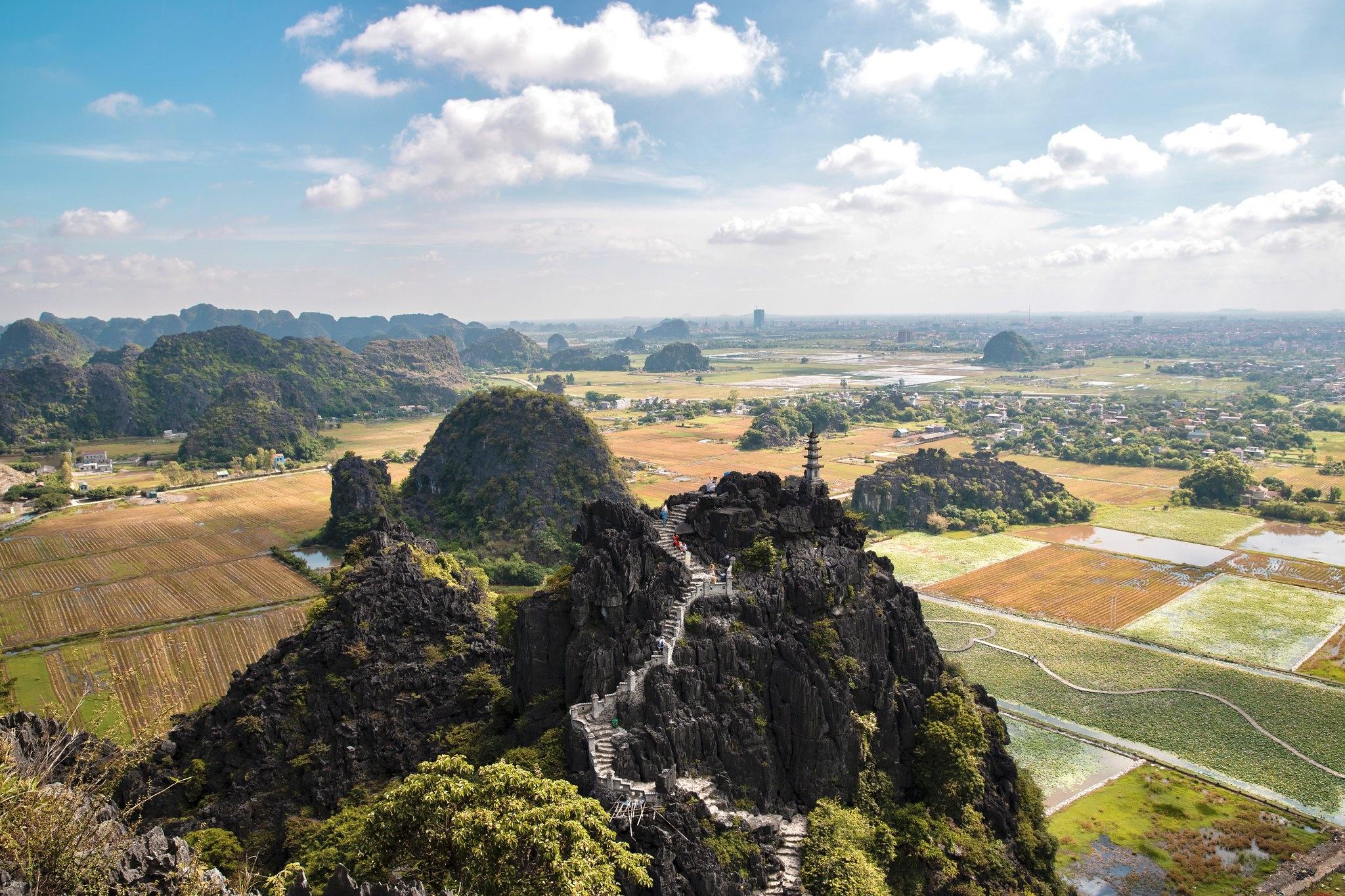 Cảnh đẹp ở cánh đồng sen Ninh Bình - Ảnh 14.