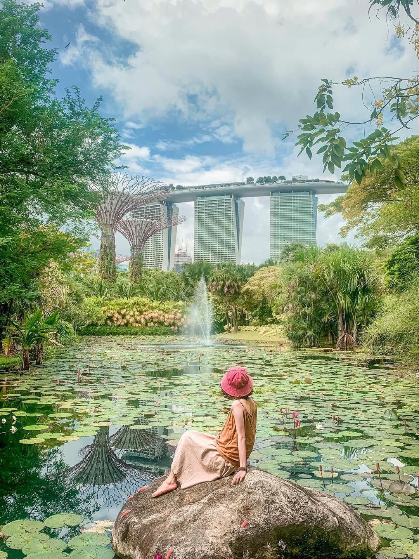 Singapore anh 8