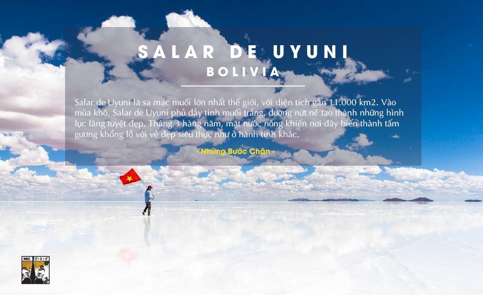 Diem den ly tuong cho nam 2016 trong mat phuot thu Viet hinh anh 1