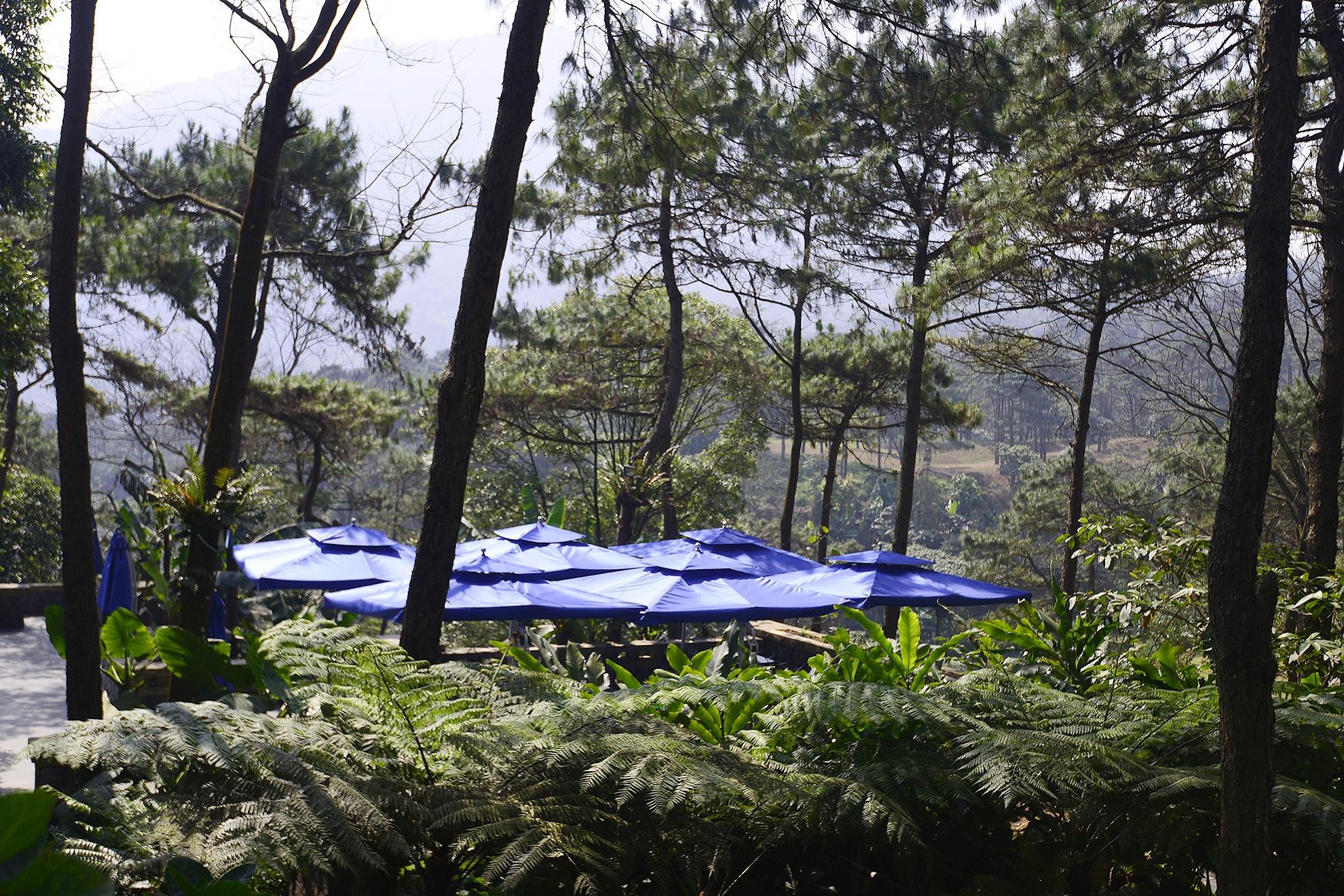 Toan canh resort hoanh trang khong phep o Ba Vi hinh anh 11