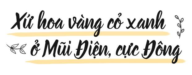 5 diem du lich di hoai khong chan cua Viet Nam anh 9