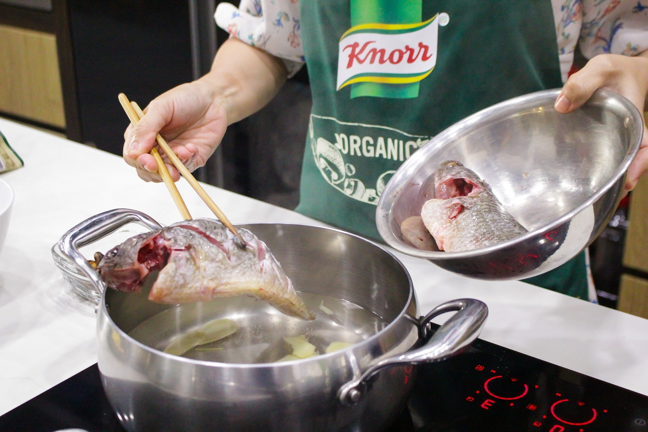 knorr anh 4