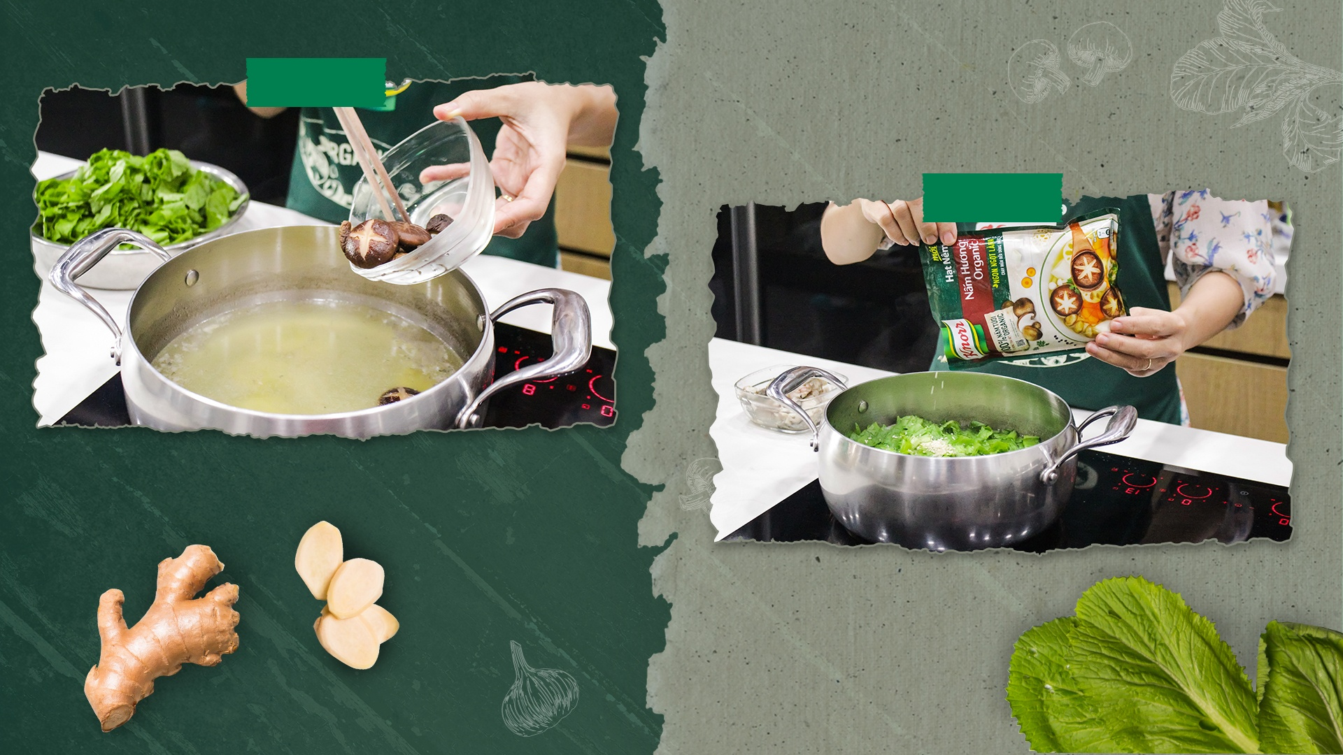 knorr anh 6