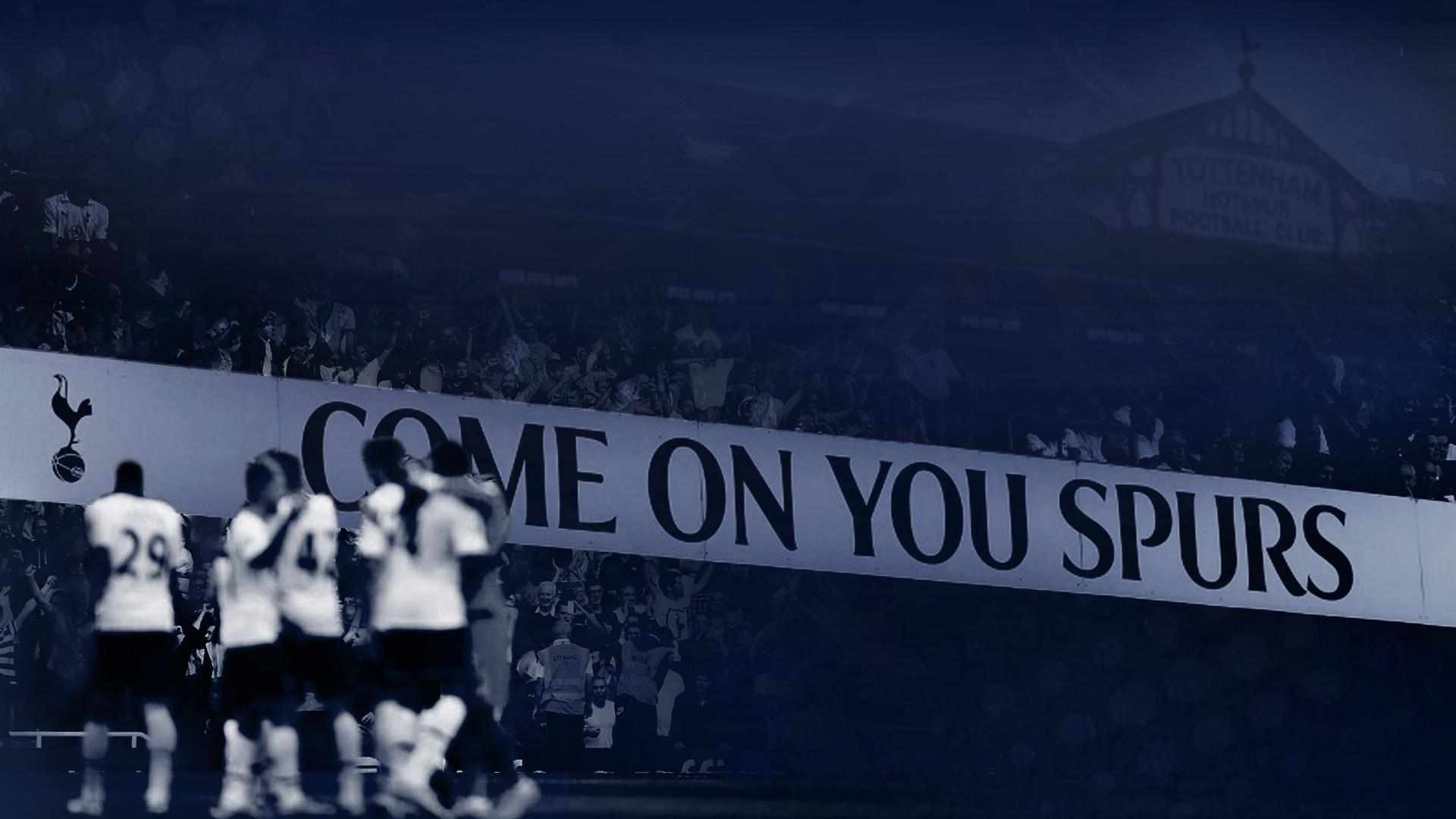 Tottenham vao chung ket CL anh 12