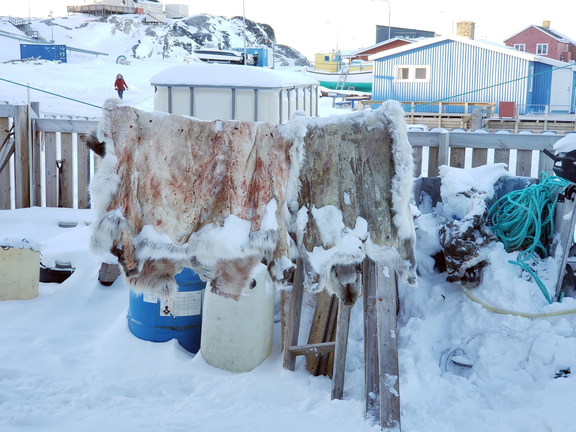 Cau chuyen Greenland va vung dat cuc Bac bi lang quen hinh anh 26
