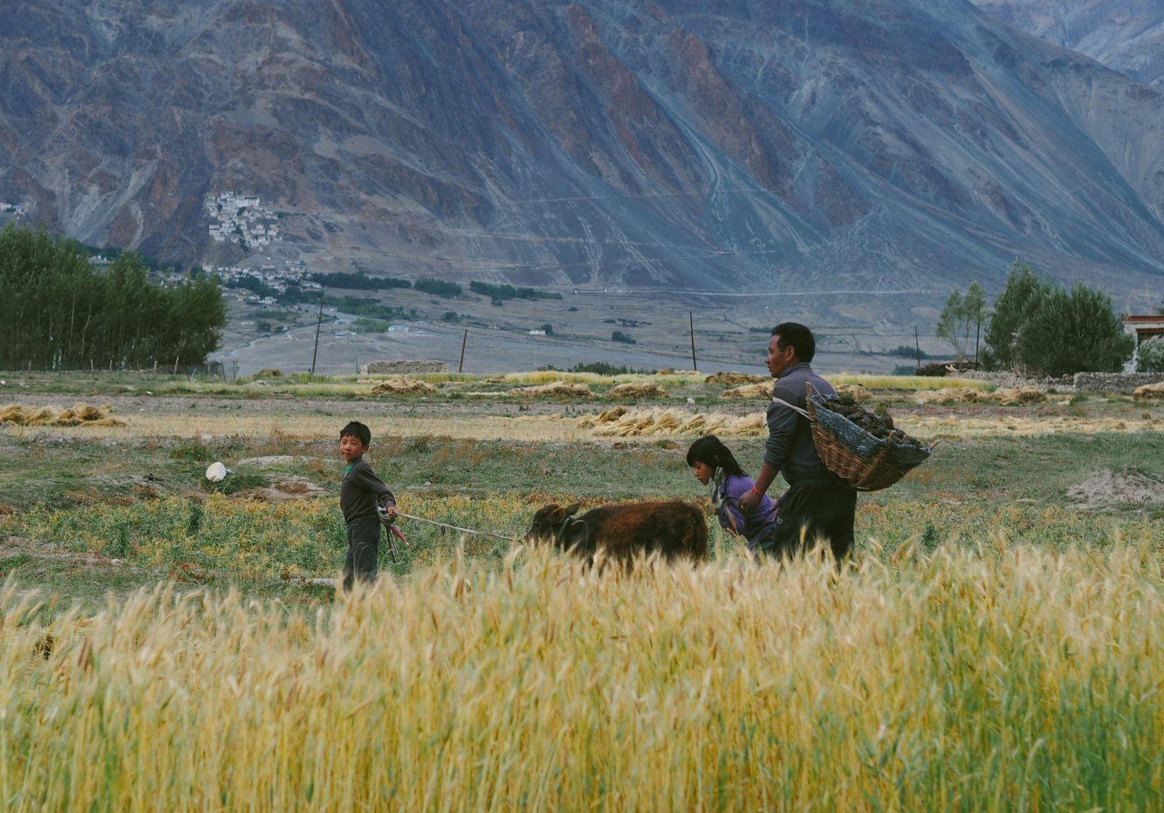 Duong den Ladakh - hanh trinh danh cho nhung doi chan khong biet moi hinh anh 44