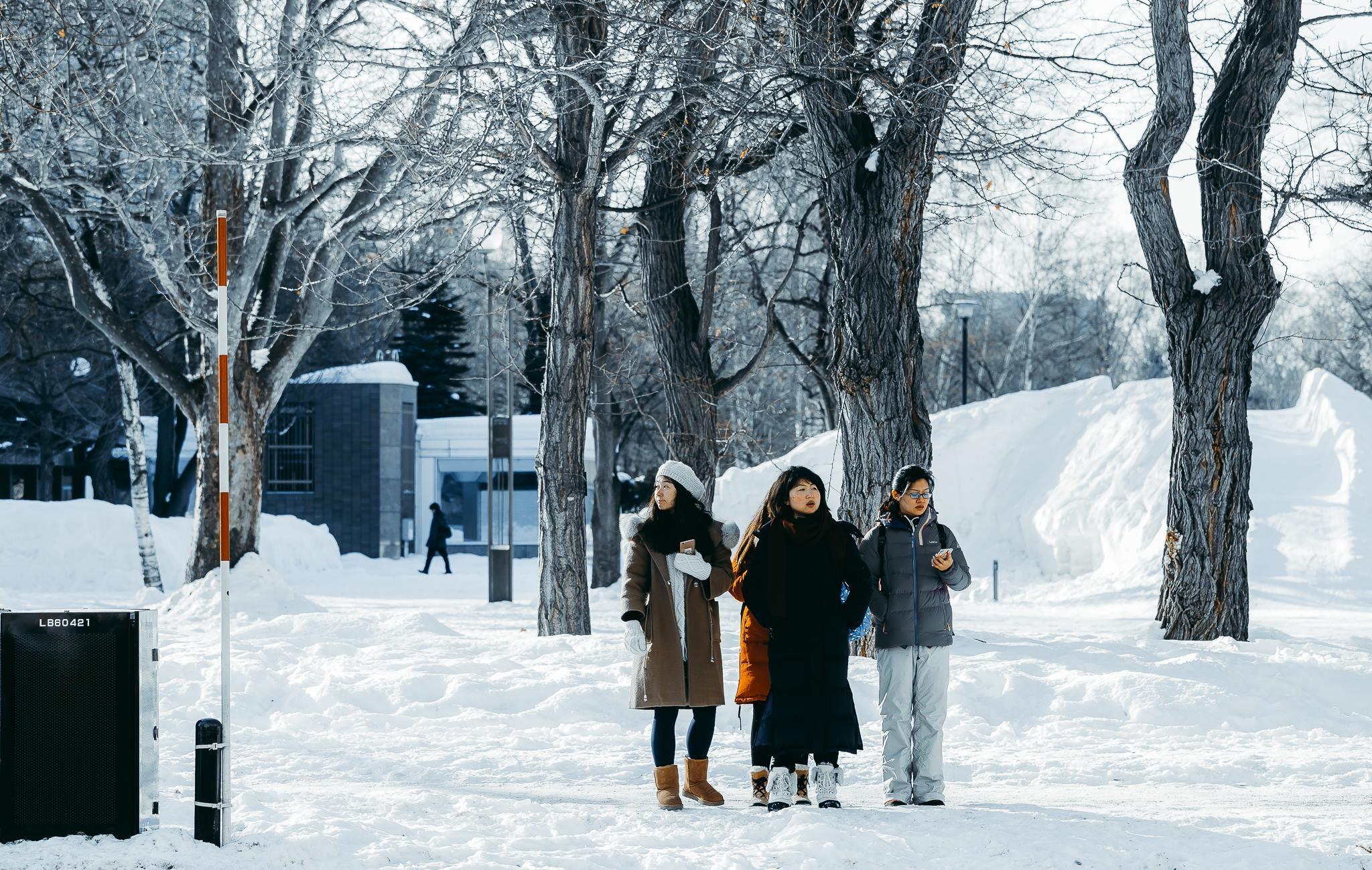 Hokkaido tuyet trang, noi dang den nhat mua dong o Nhat Ban hinh anh 36