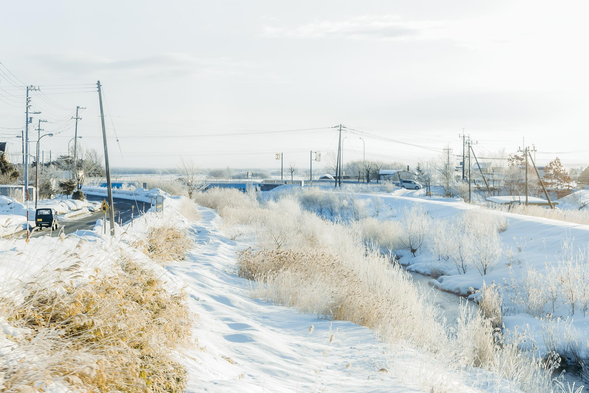 Hokkaido tuyet trang, noi dang den nhat mua dong o Nhat Ban hinh anh 3