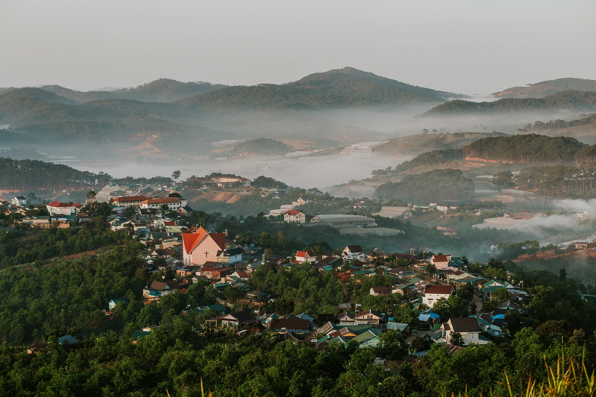 Nam moi ghe Da Lat, ngam thanh pho chim trong suong hinh anh 15