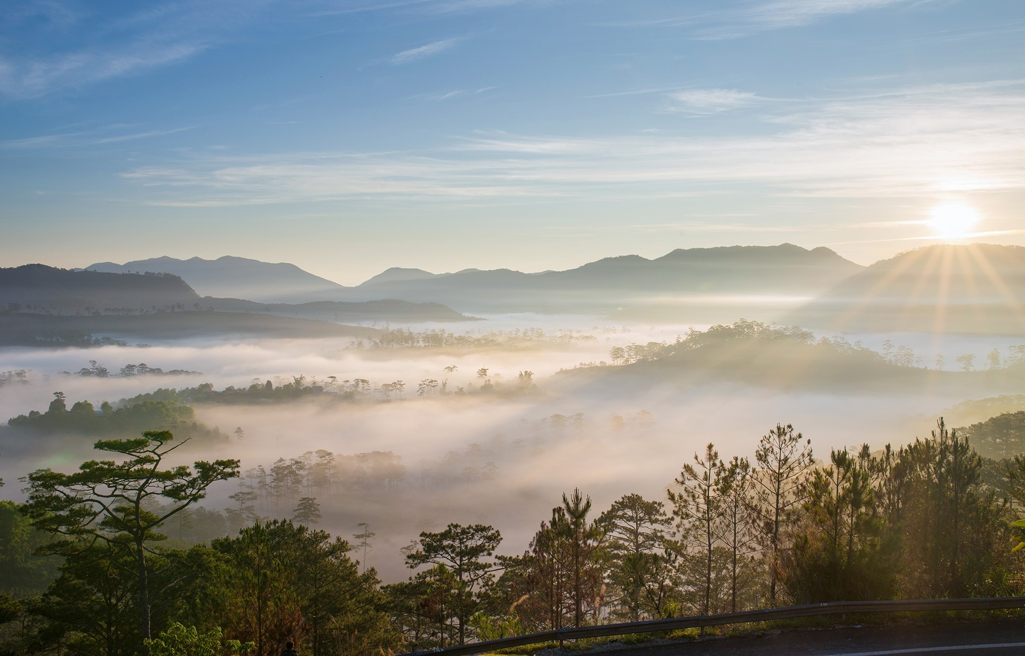 Nam moi ghe Da Lat, ngam thanh pho chim trong suong hinh anh 8