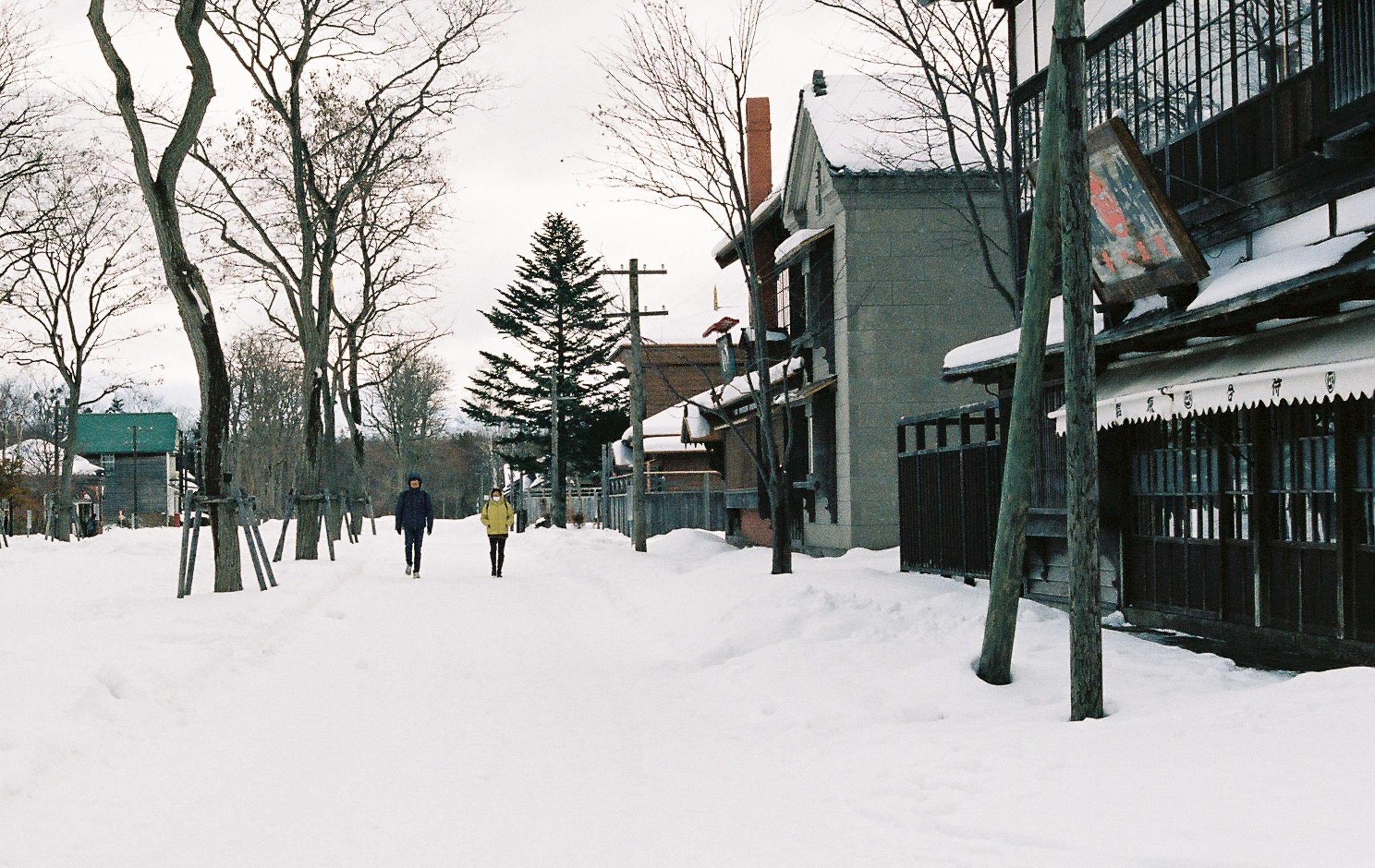 Hokkaido Nhat Ban anh 24