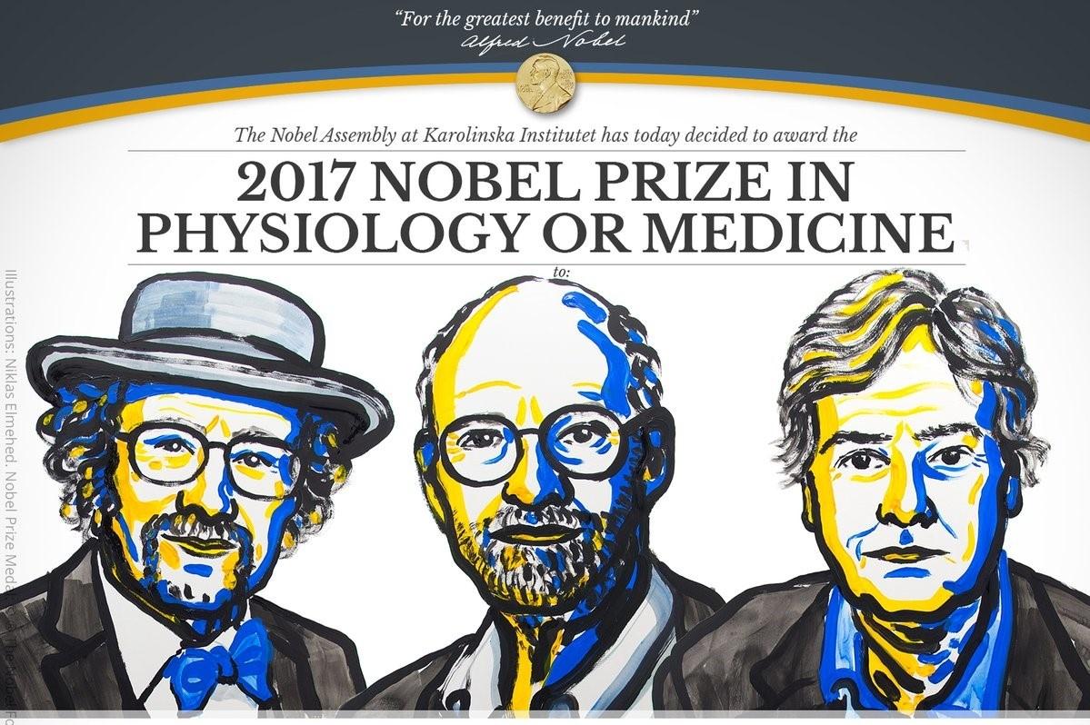 Mua Nobel 2017 khep lai voi nhung kham pha thay doi the gioi hinh anh 2